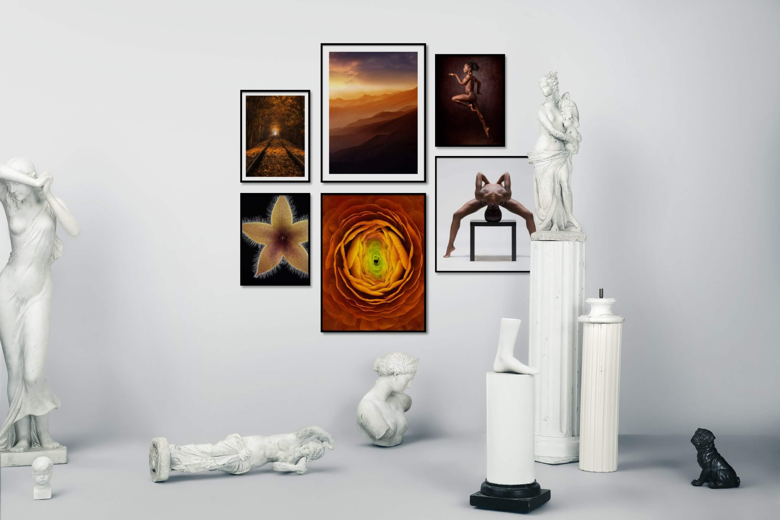 Gallery wall idea with six framed pictures arranged on a wall depicting Nature, Mindfulness, Dark Tones, For the Minimalist, Flowers & Plants, For the Moderate, Fashion & Beauty, and Bright Tones