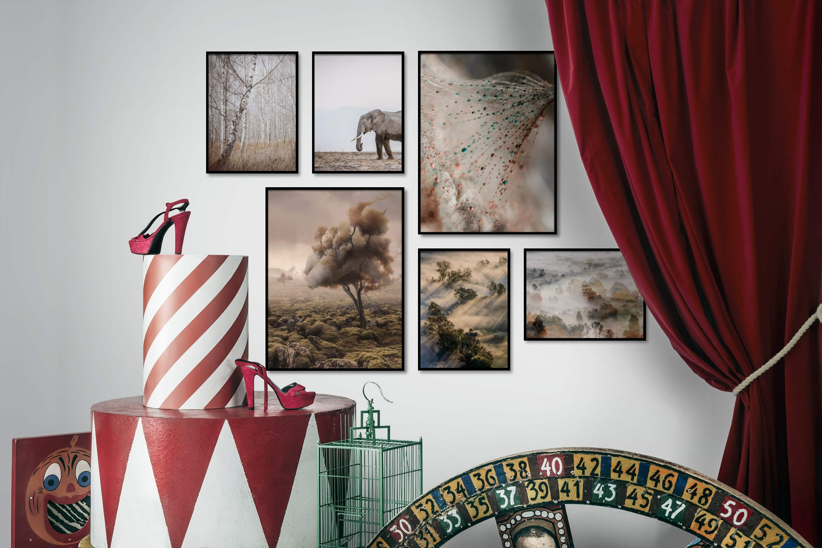 Gallery wall idea with six framed pictures arranged on a wall depicting Nature, Animals, Artsy, For the Moderate, Flowers & Plants, and Country Life