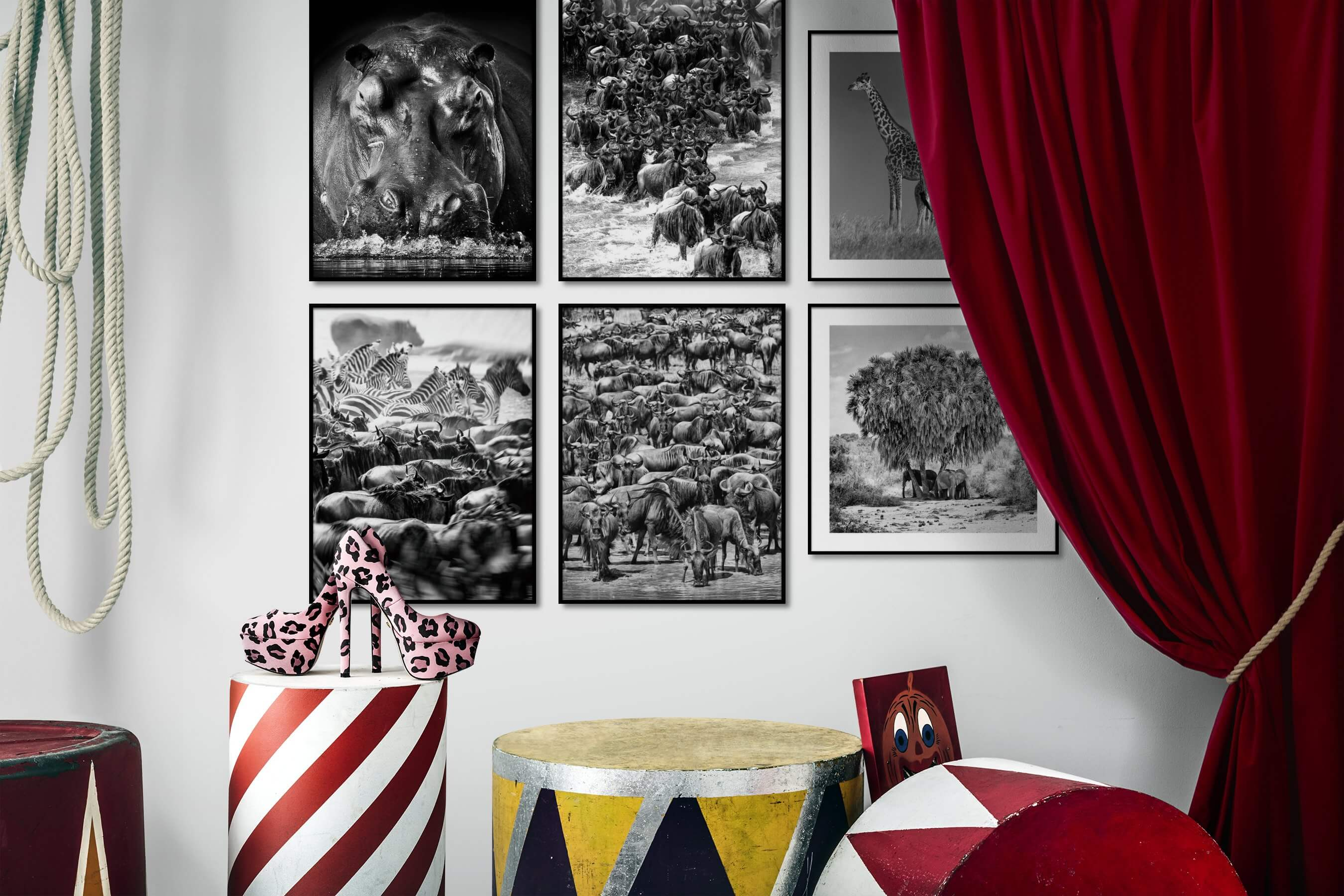 Gallery wall idea with six framed pictures arranged on a wall depicting Black & White, Animals, For the Maximalist, and Nature