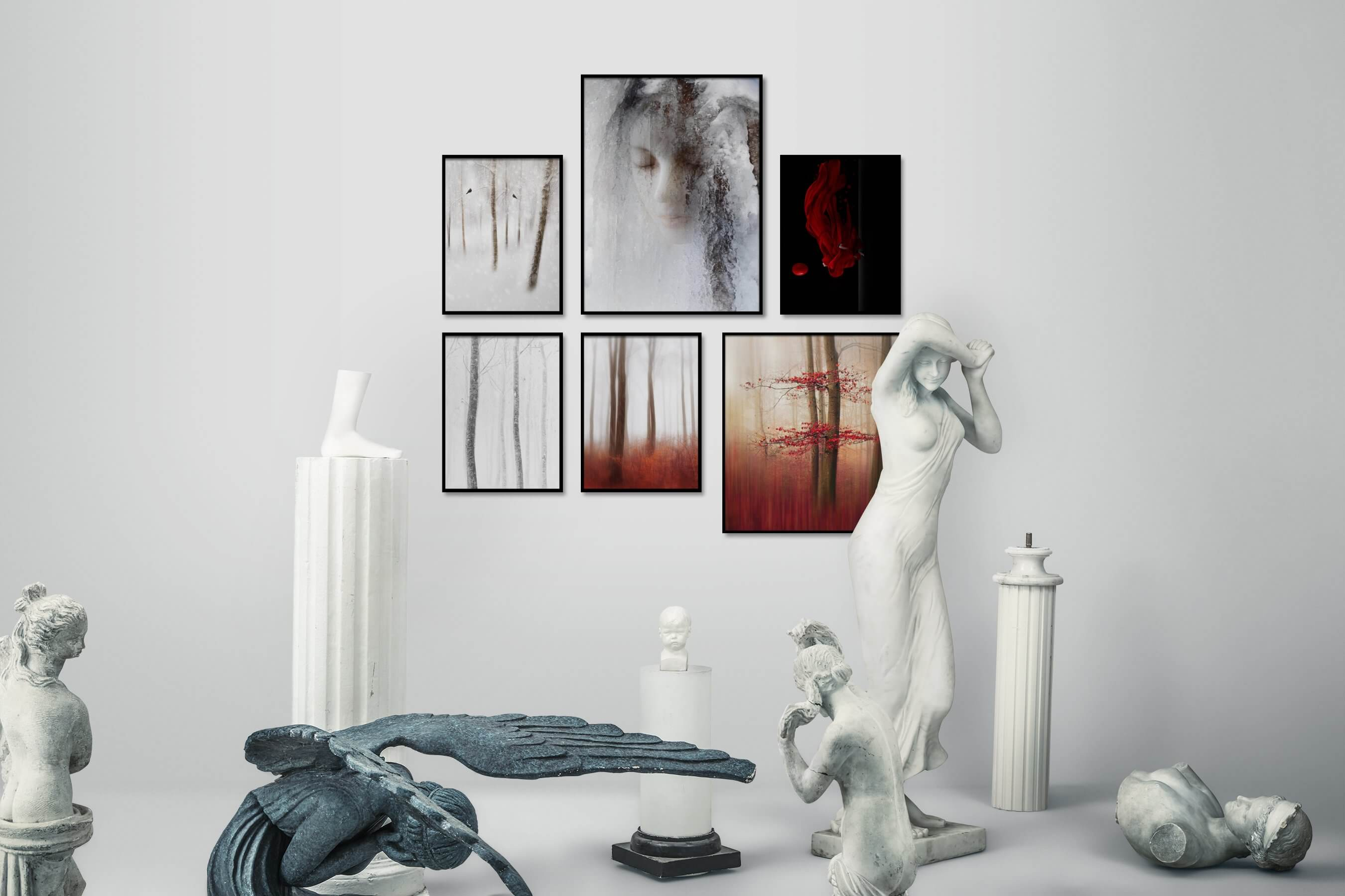 Gallery wall idea with six framed pictures arranged on a wall depicting For the Moderate, Nature, Artsy, Black & White, Bright Tones, and Dark Tones