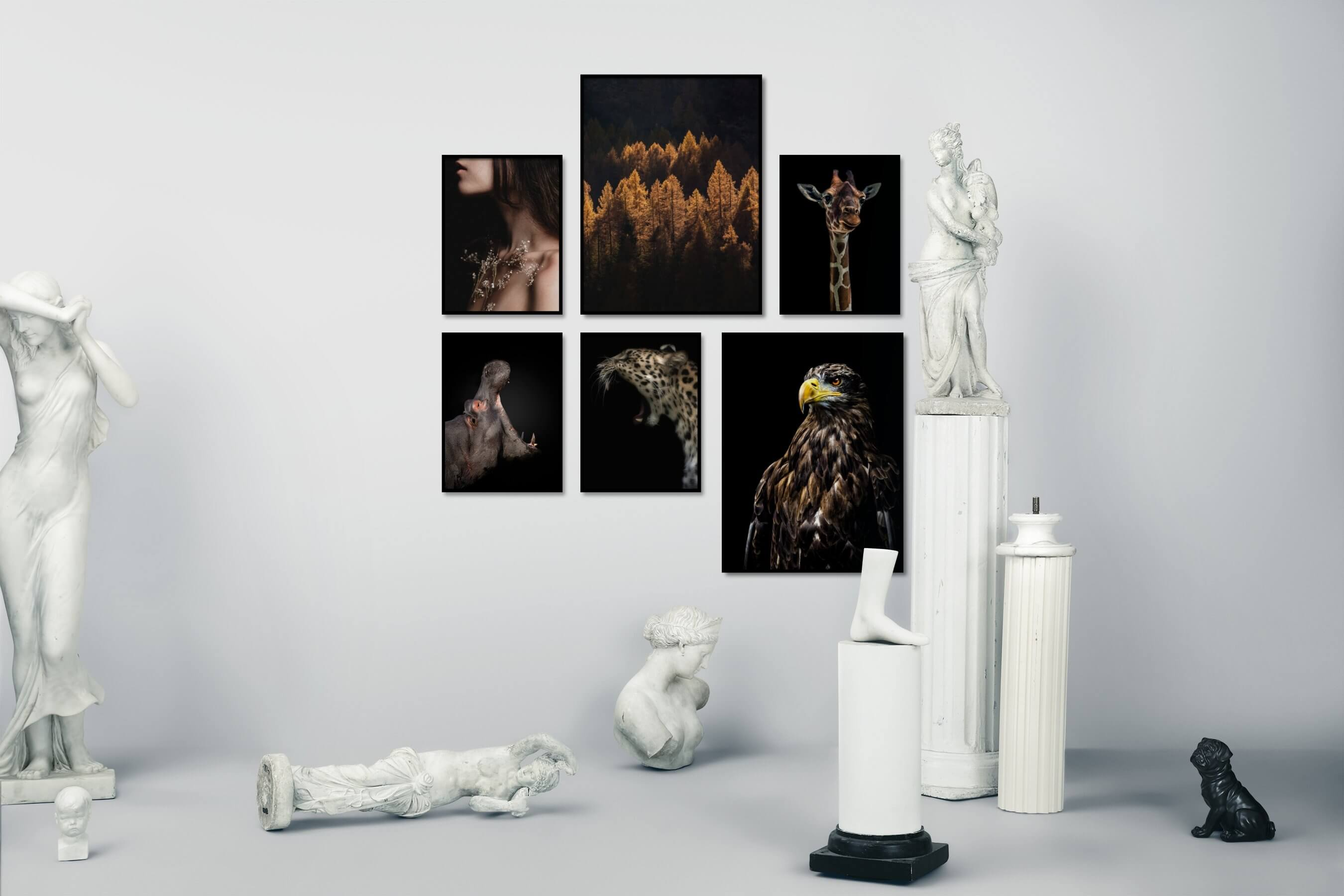 Gallery wall idea with six framed pictures arranged on a wall depicting Fashion & Beauty, For the Moderate, Nature, Mindfulness, Dark Tones, Animals, and For the Minimalist