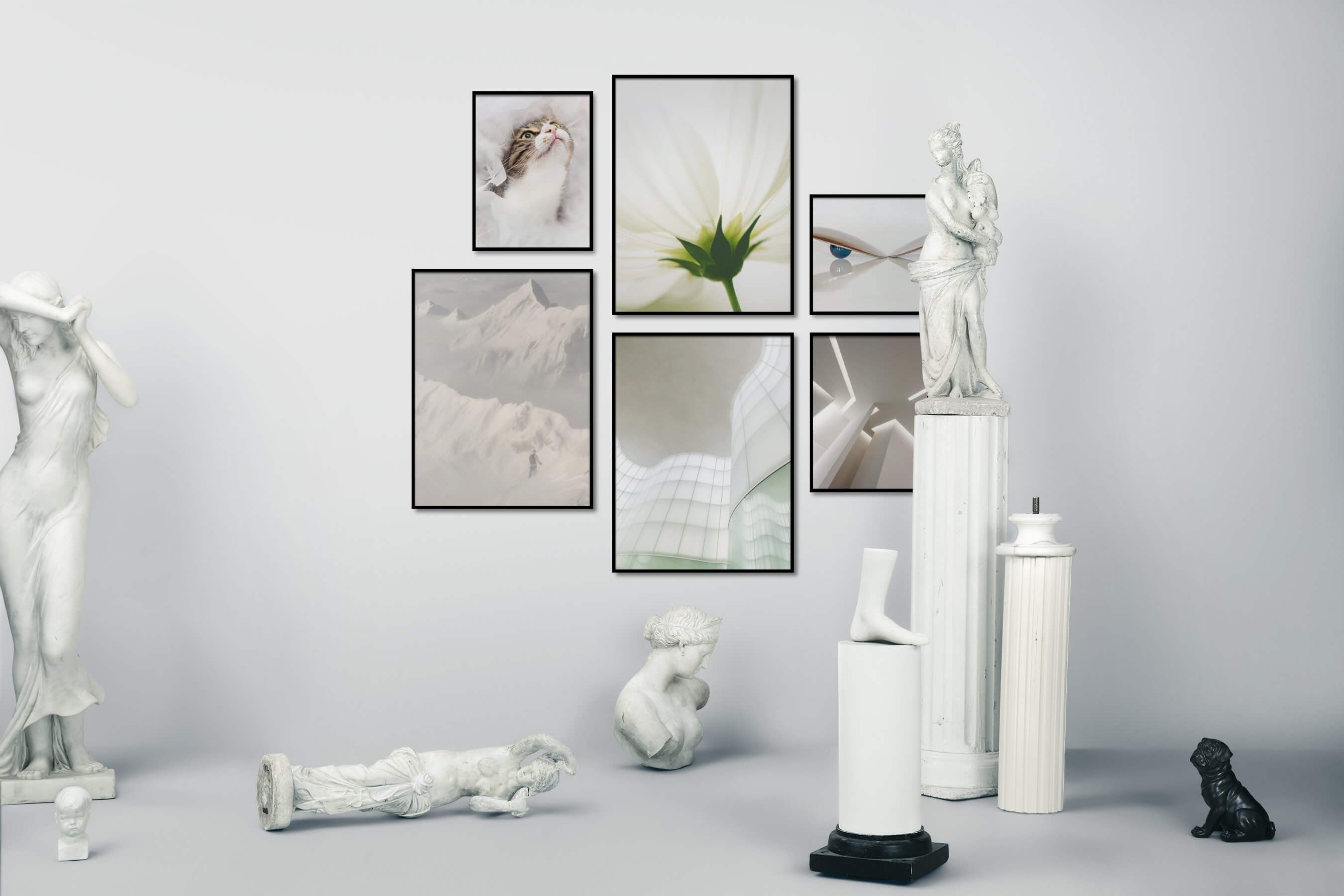 Gallery wall idea with six framed pictures arranged on a wall depicting Animals, Flowers & Plants, Mindfulness, Nature, For the Moderate, and For the Minimalist