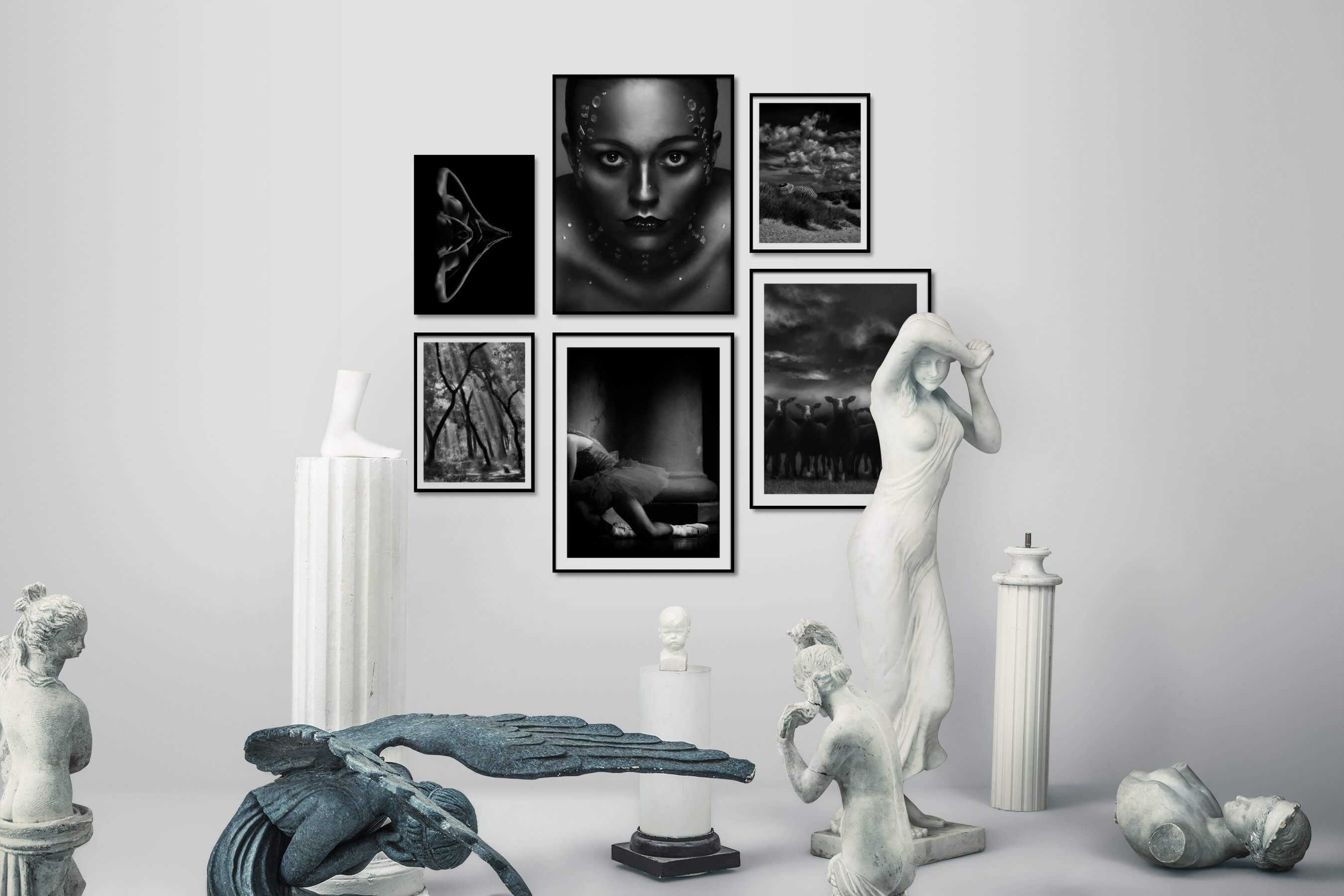Gallery wall idea with six framed pictures arranged on a wall depicting Fashion & Beauty, Black & White, Dark Tones, For the Minimalist, Nature, Beach & Water, Animals, and Country Life