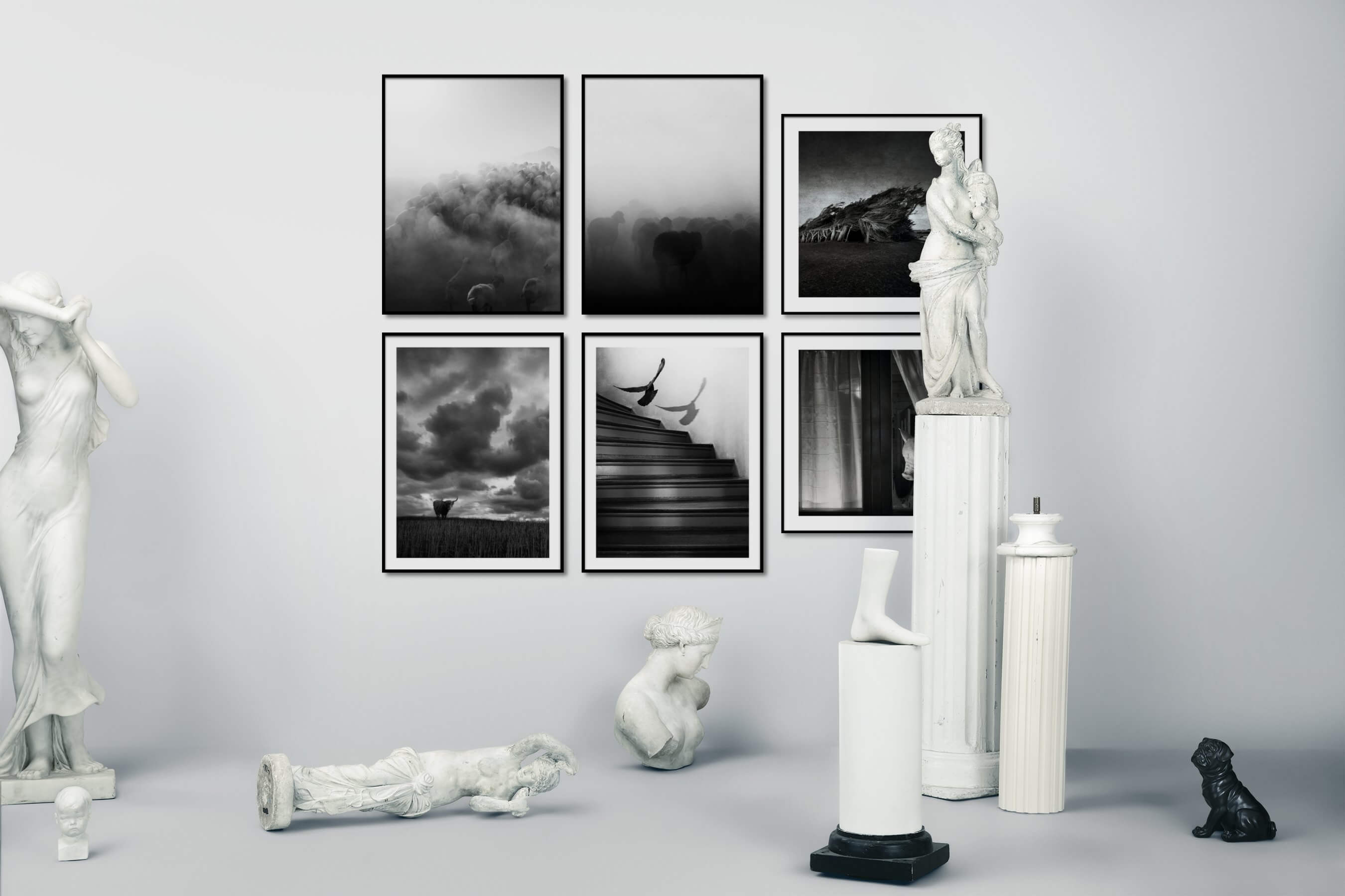 Gallery wall idea with six framed pictures arranged on a wall depicting Black & White, Animals, Country Life, For the Minimalist, For the Moderate, Nature, and Artsy