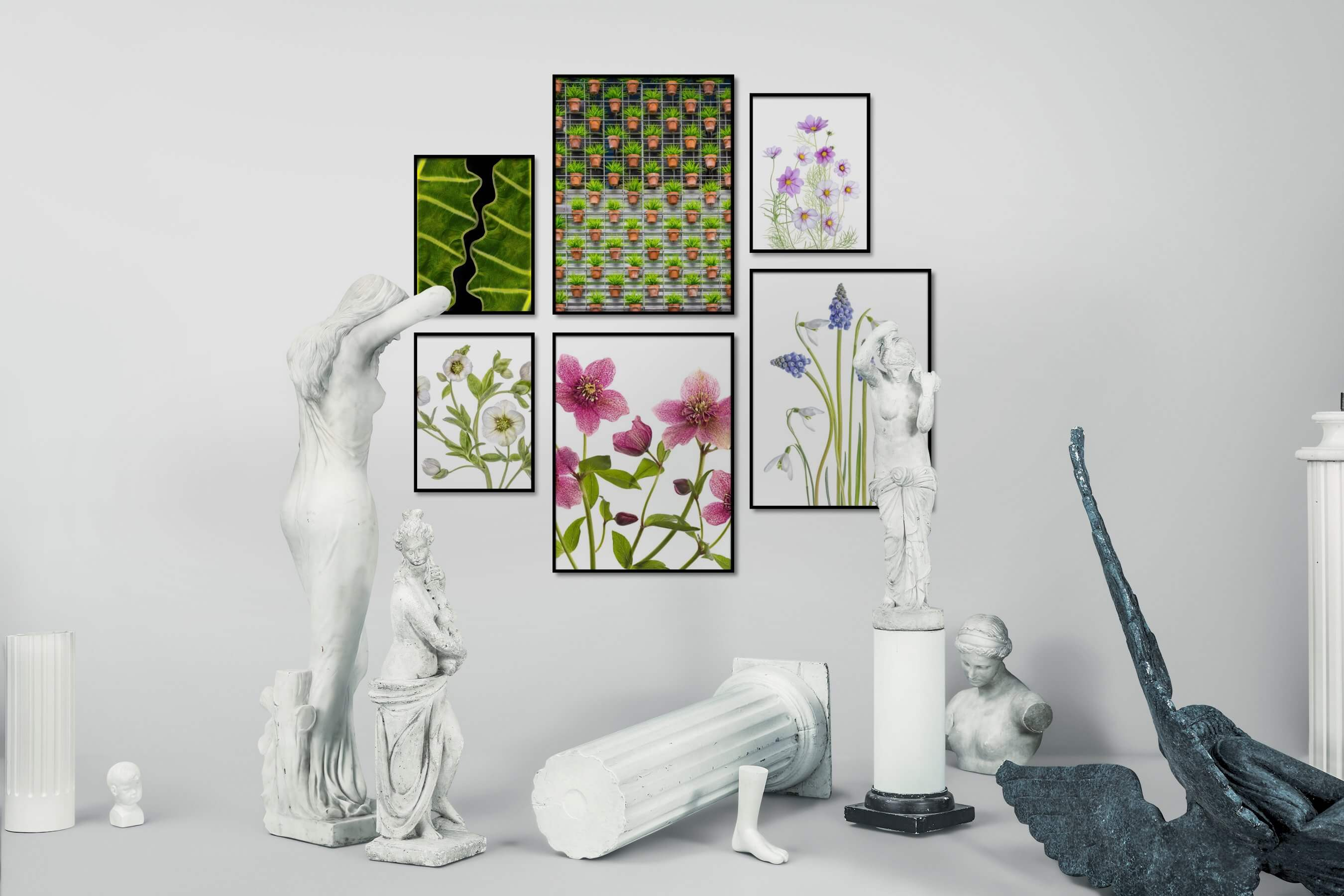 Gallery wall idea with six framed pictures arranged on a wall depicting For the Moderate, Flowers & Plants, and Bright Tones