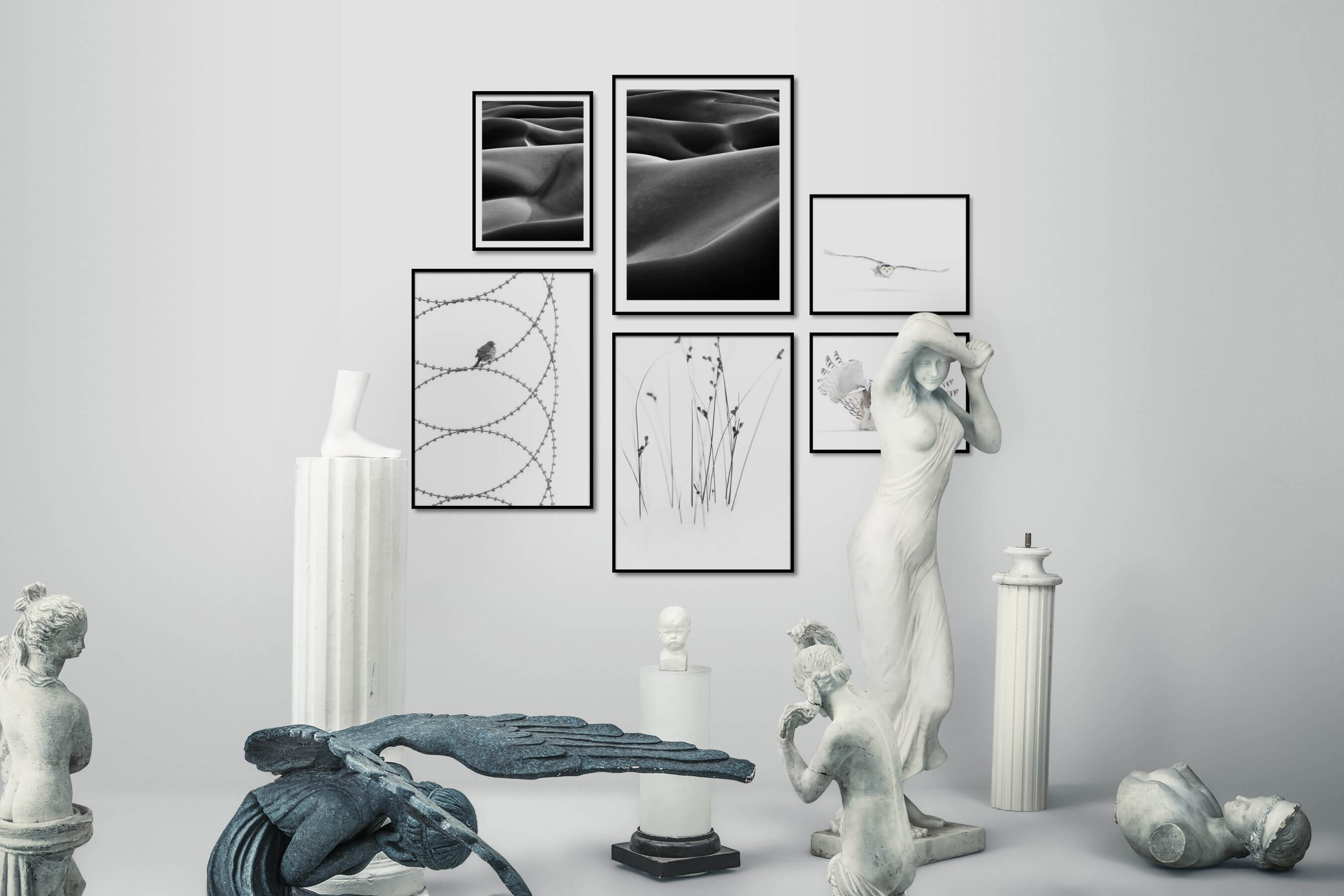 Gallery wall idea with six framed pictures arranged on a wall depicting Black & White, For the Moderate, Nature, Bright Tones, Animals, For the Minimalist, Flowers & Plants, and Mindfulness