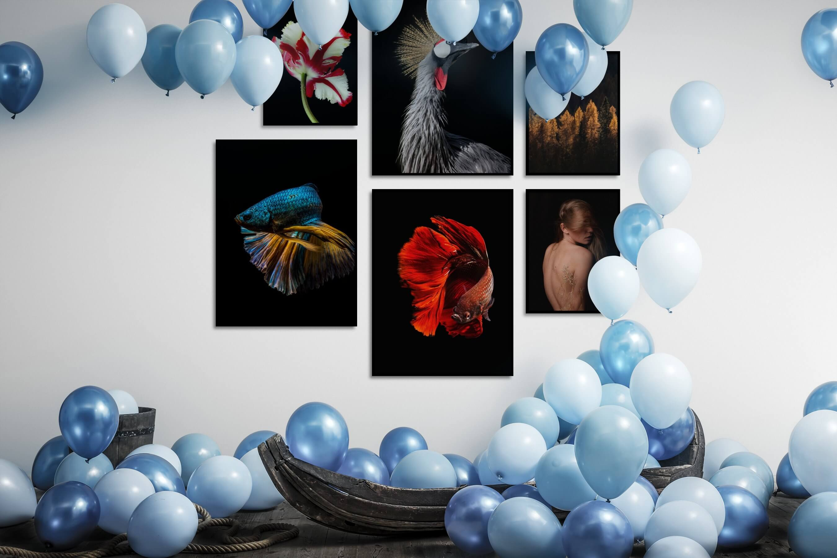 Gallery wall idea with six framed pictures arranged on a wall depicting Dark Tones, For the Moderate, Flowers & Plants, Animals, Colorful, For the Minimalist, Nature, Mindfulness, and Fashion & Beauty