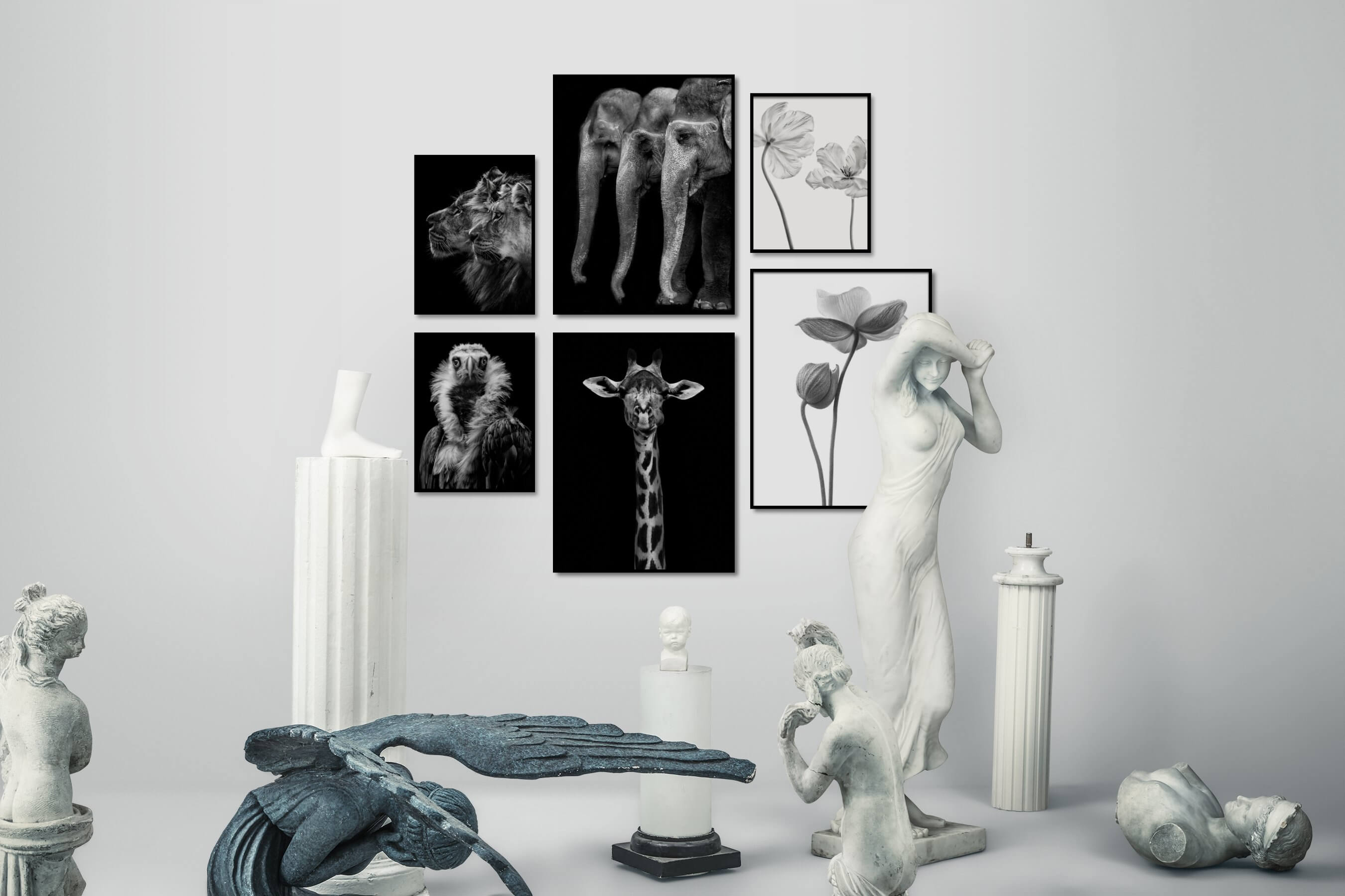 Gallery wall idea with six framed pictures arranged on a wall depicting Black & White, Dark Tones, For the Minimalist, Animals, Bright Tones, Flowers & Plants, Mindfulness, and Vintage