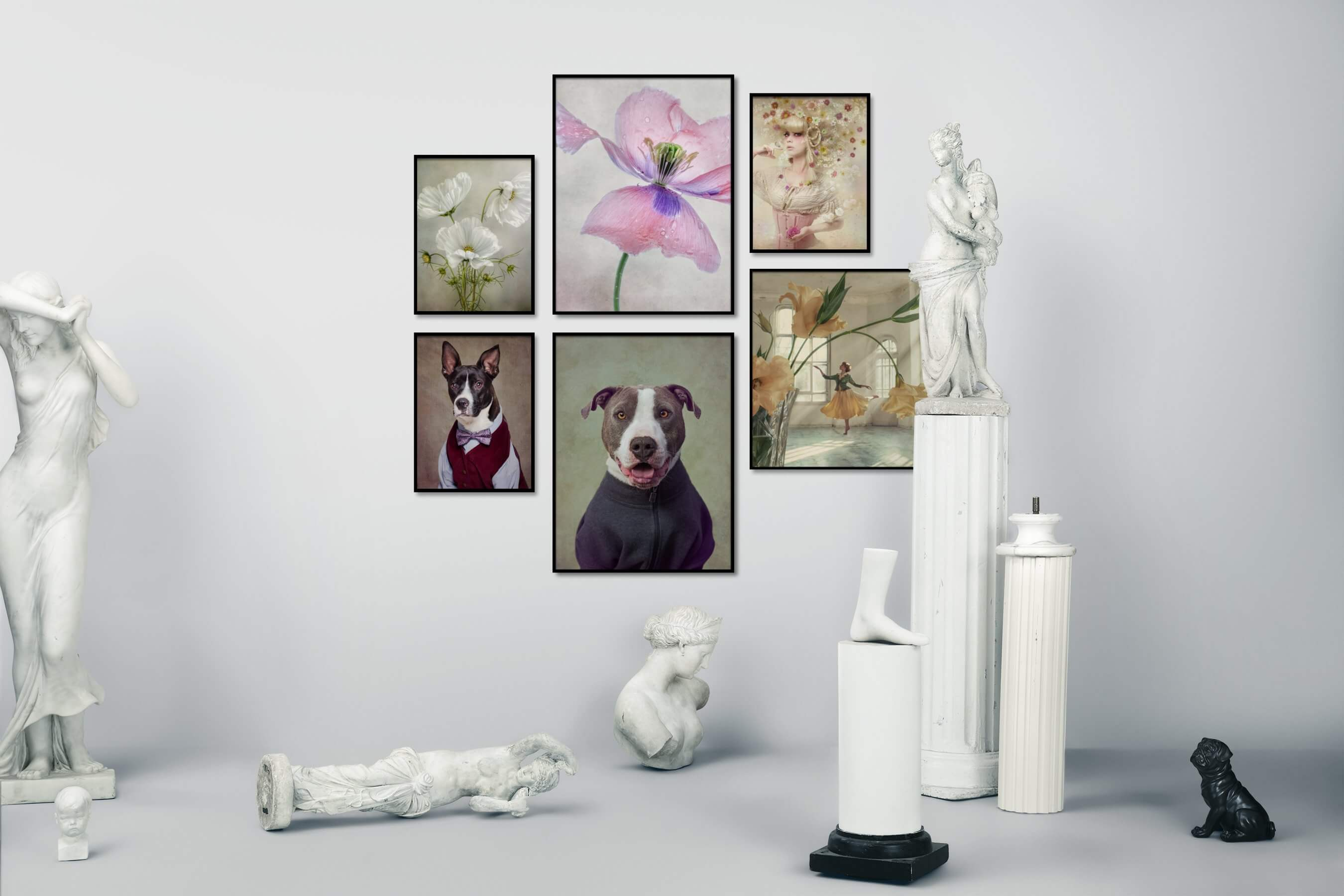Gallery wall idea with six framed pictures arranged on a wall depicting Flowers & Plants, Vintage, For the Moderate, Animals, and Fashion & Beauty