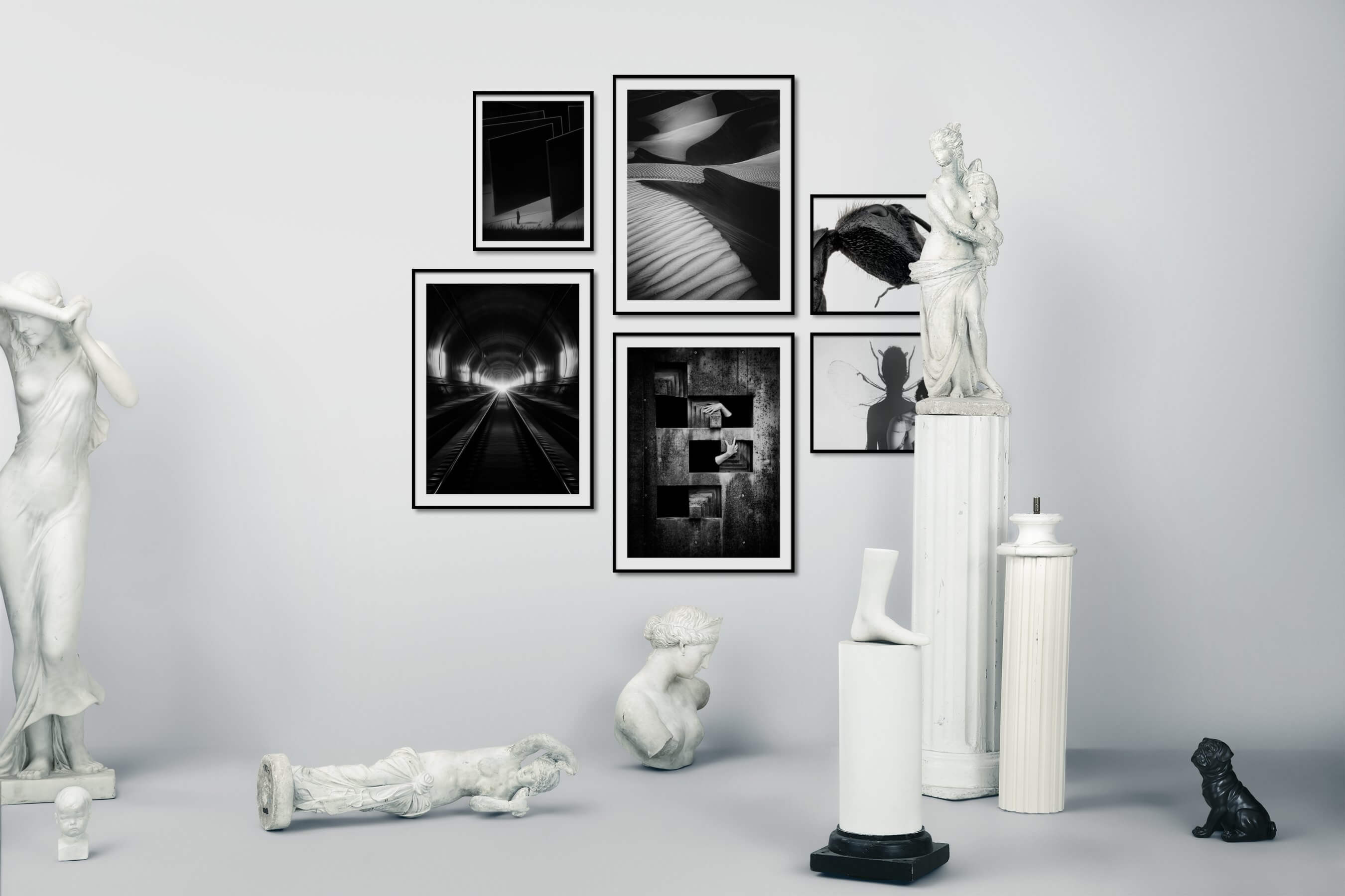 Gallery wall idea with six framed pictures arranged on a wall depicting Artsy, Black & White, For the Moderate, Nature, Bright Tones, For the Minimalist, and Animals