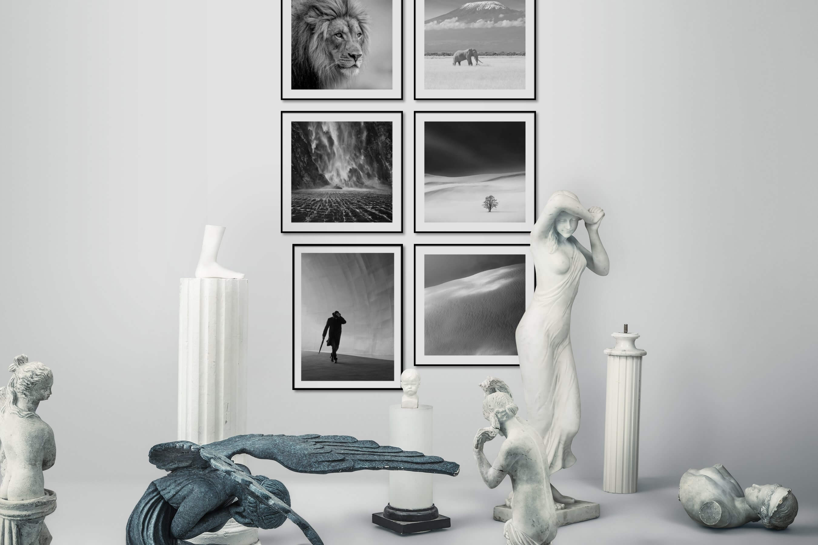 Gallery wall idea with six framed pictures arranged on a wall depicting Black & White, Animals, Nature, and For the Minimalist
