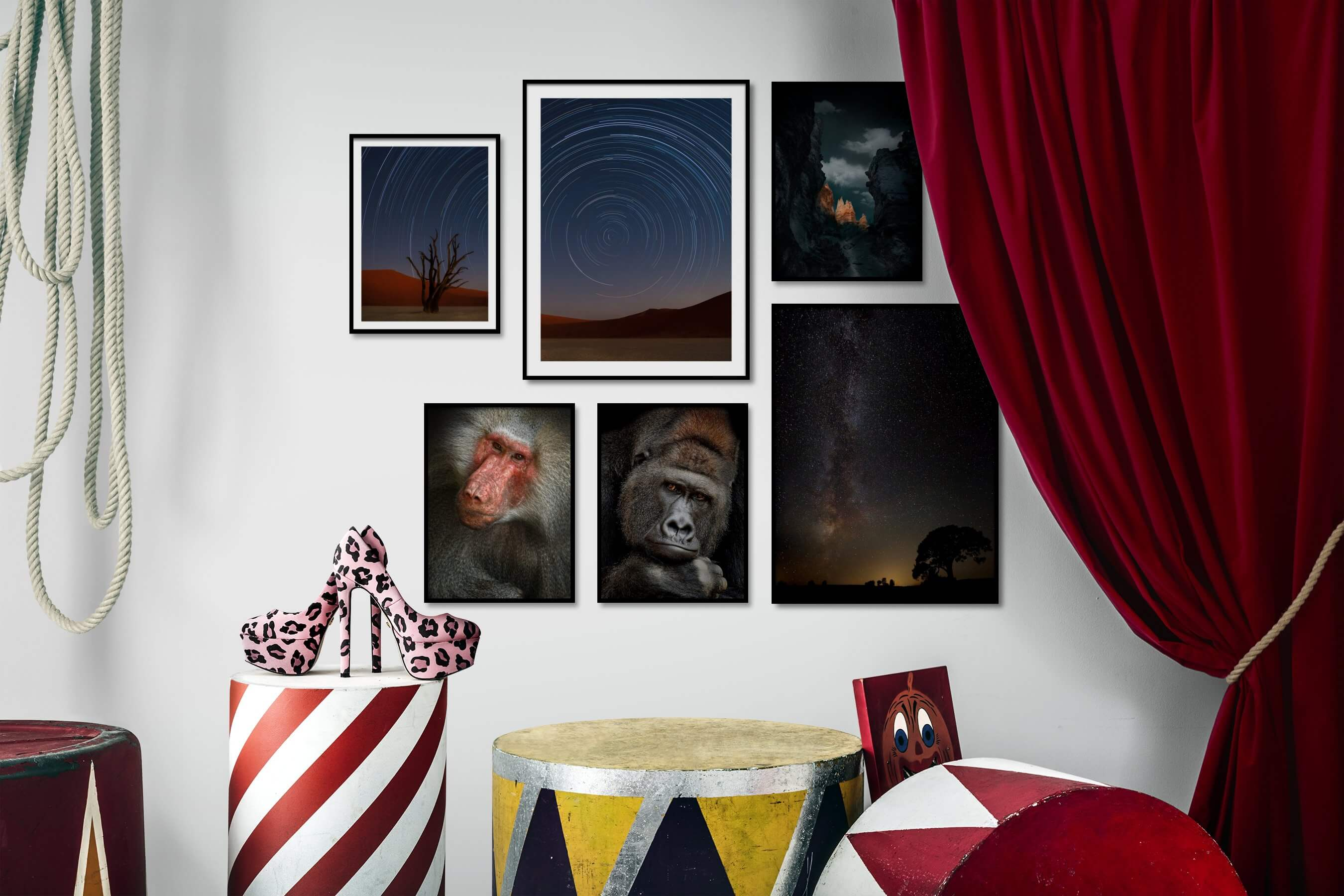 Gallery wall idea with six framed pictures arranged on a wall depicting For the Moderate, Nature, Animals, Dark Tones, and For the Minimalist