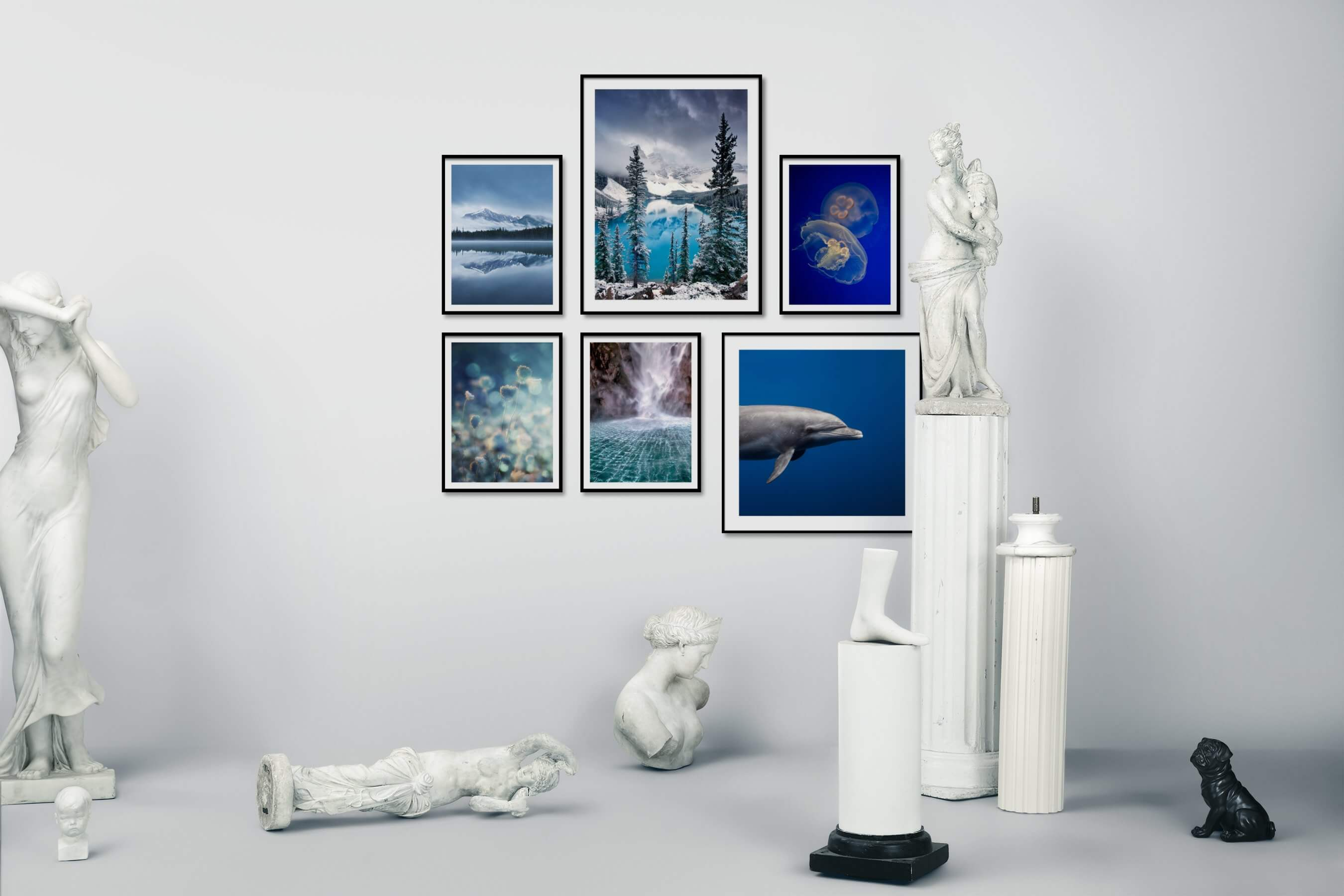 Gallery wall idea with six framed pictures arranged on a wall depicting Nature, For the Moderate, Flowers & Plants, For the Minimalist, Animals, and Beach & Water