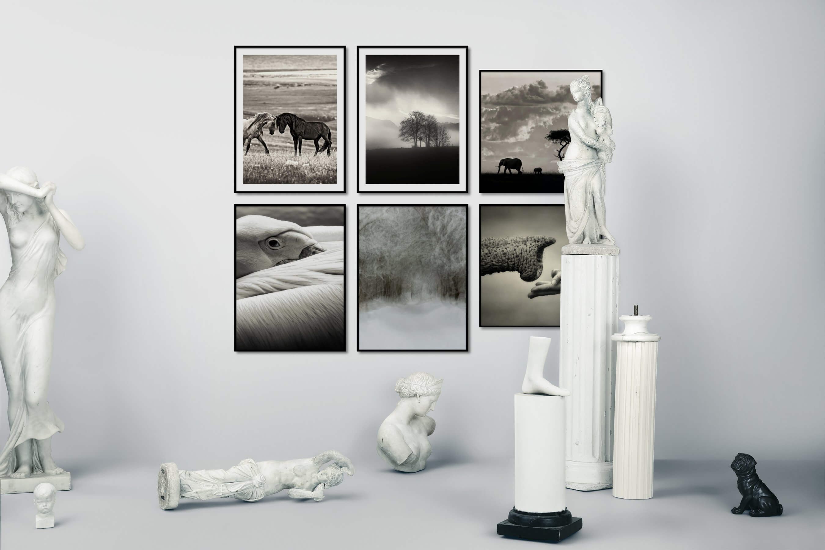 Gallery wall idea with six framed pictures arranged on a wall depicting Black & White, Animals, Country Life, and Nature