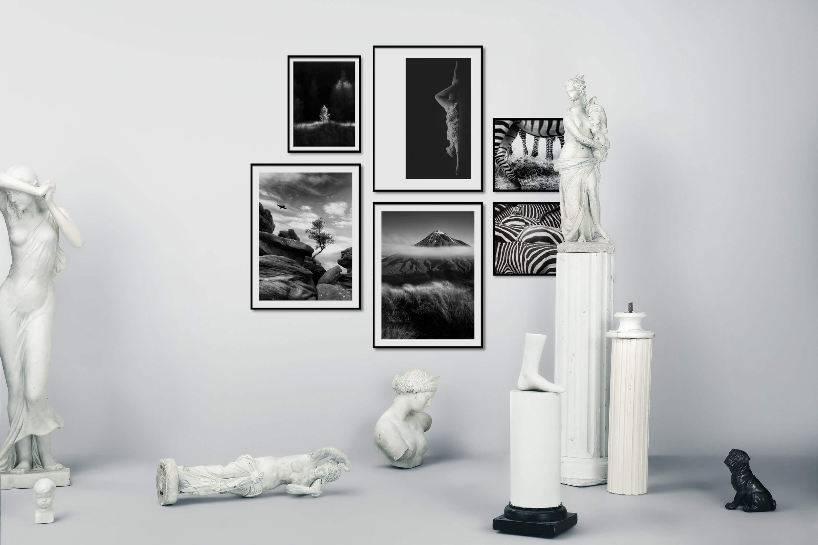 Gallery wall idea with six framed pictures arranged on a wall depicting Black & White, Nature, Fashion & Beauty, For the Minimalist, For the Moderate, Animals, and For the Maximalist
