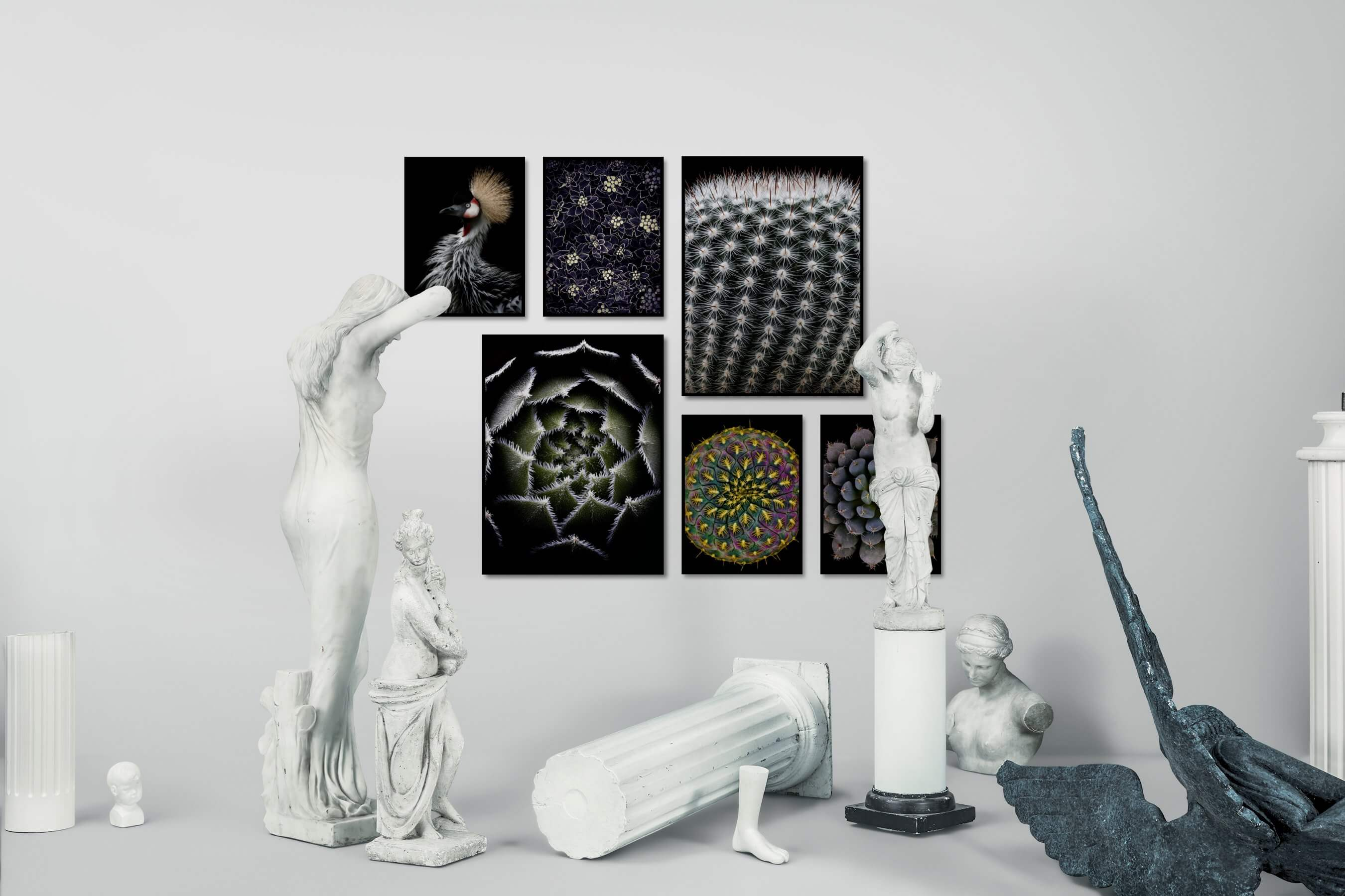 Gallery wall idea with six framed pictures arranged on a wall depicting Dark Tones, For the Minimalist, Animals, For the Maximalist, Flowers & Plants, For the Moderate, and Colorful