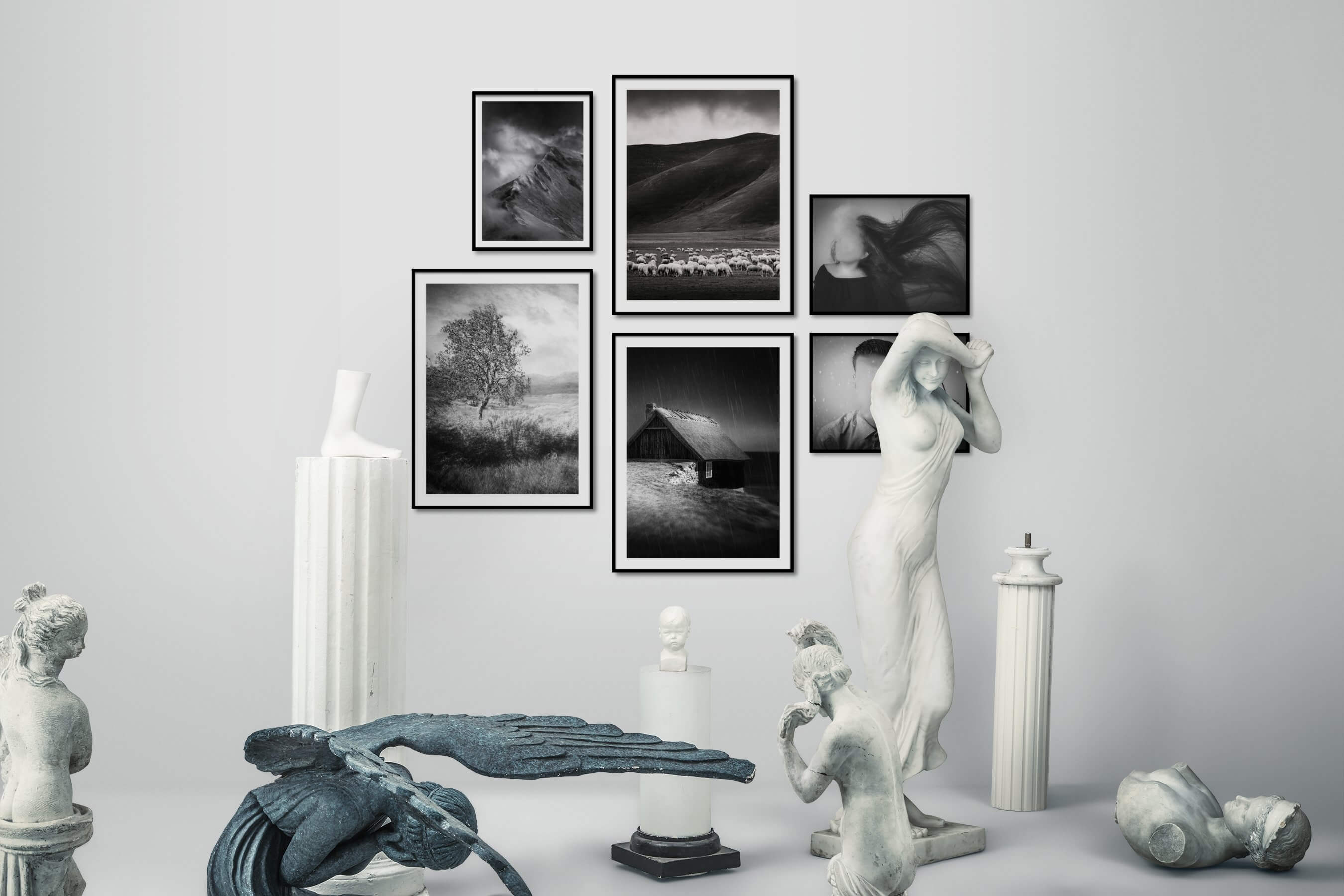 Gallery wall idea with six framed pictures arranged on a wall depicting Black & White, Nature, Animals, Country Life, and Artsy