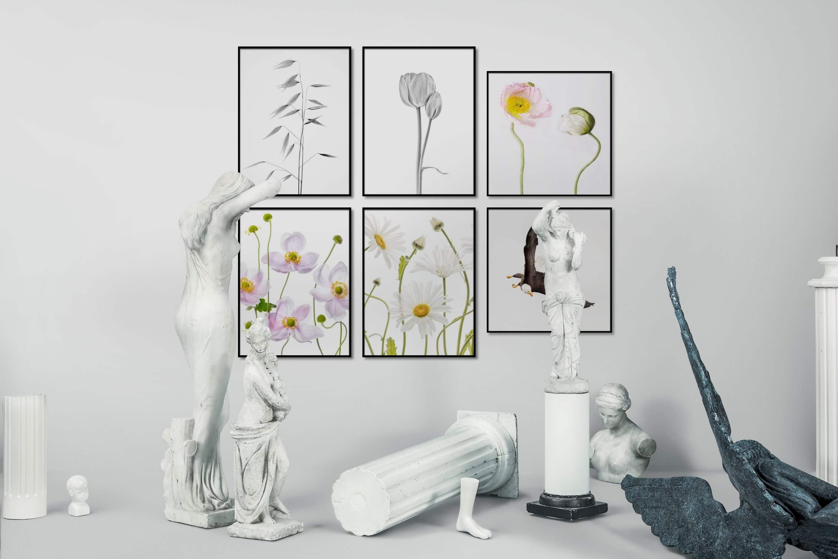 Gallery wall idea with six framed pictures arranged on a wall depicting Black & White, Bright Tones, For the Minimalist, Flowers & Plants, Mindfulness, Vintage, For the Moderate, Animals, and Americana