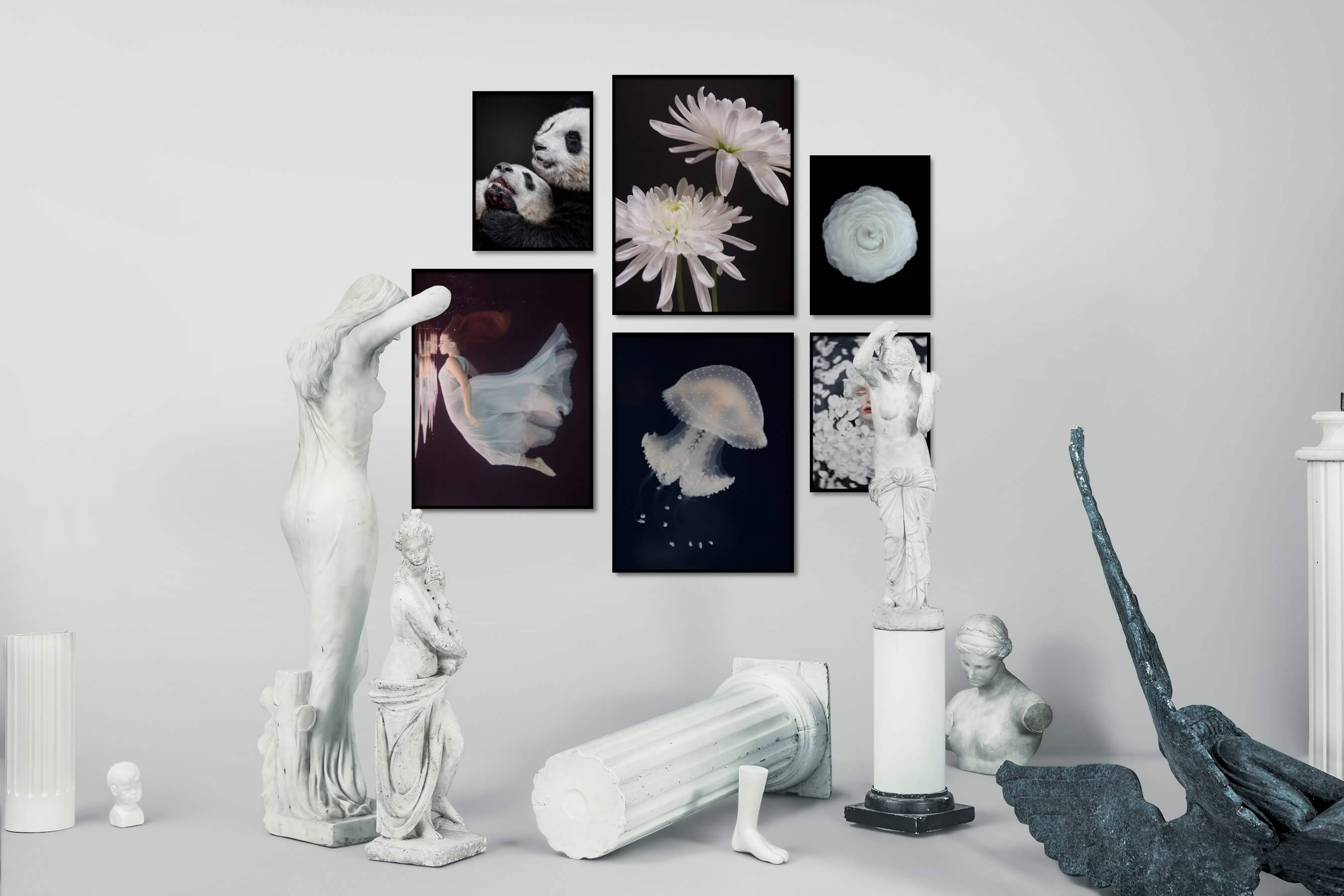 Gallery wall idea with six framed pictures arranged on a wall depicting Animals, Dark Tones, For the Moderate, Flowers & Plants, Fashion & Beauty, Beach & Water, and For the Minimalist