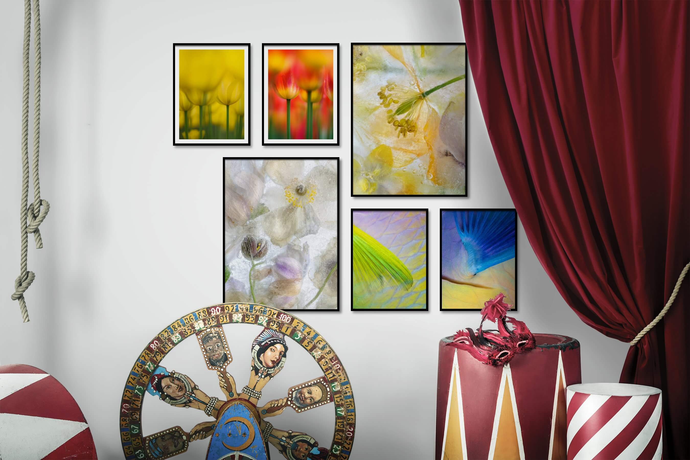 Gallery wall idea with six framed pictures arranged on a wall depicting For the Moderate, Flowers & Plants, and Animals