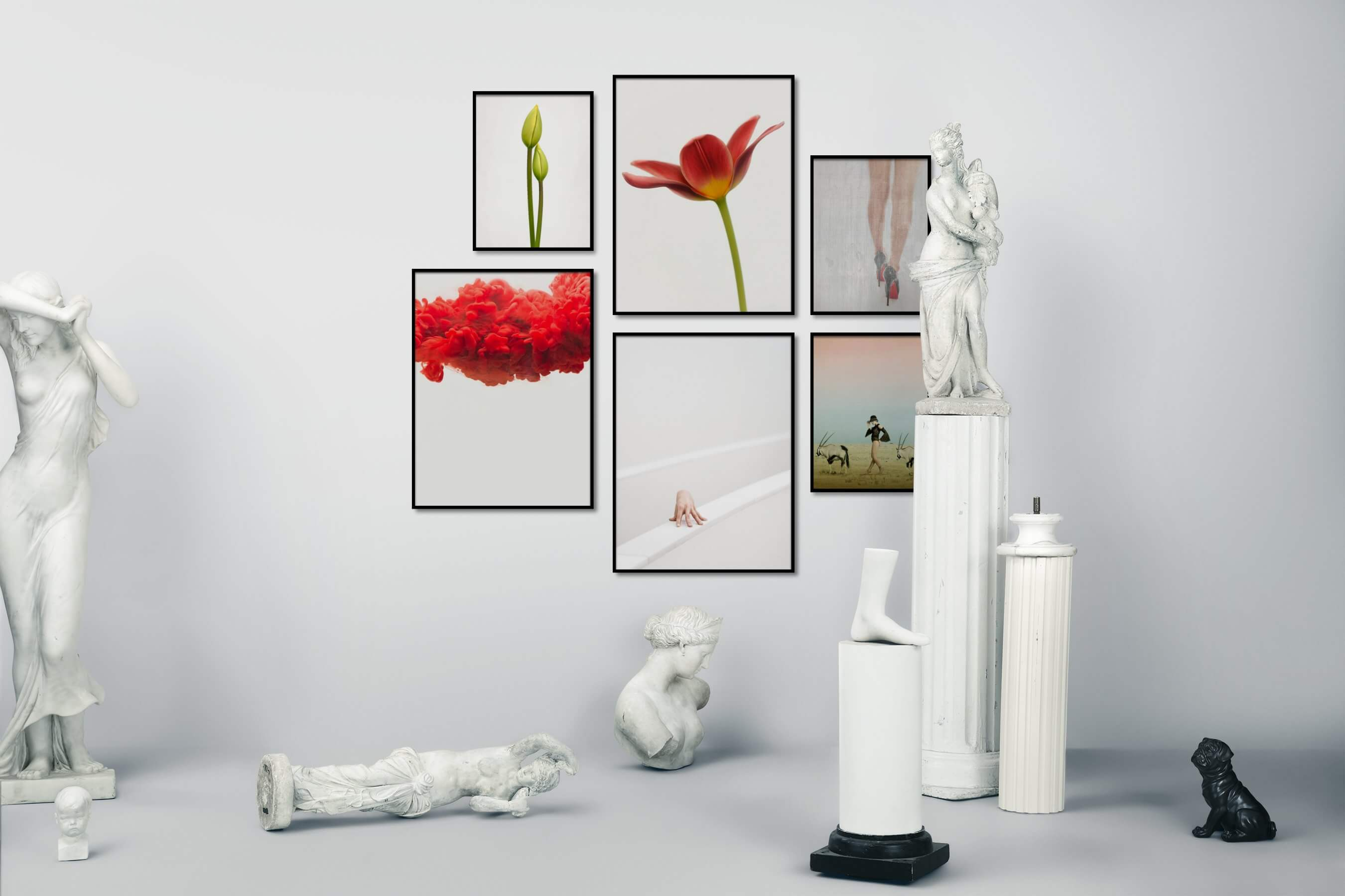 Gallery wall idea with six framed pictures arranged on a wall depicting Bright Tones, For the Minimalist, Flowers & Plants, Mindfulness, Vintage, Fashion & Beauty, For the Moderate, and Animals