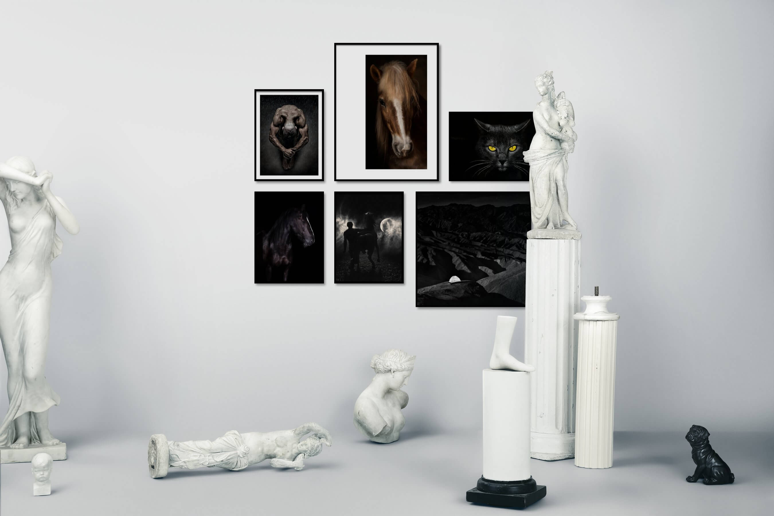 Gallery wall idea with six framed pictures arranged on a wall depicting Fashion & Beauty, For the Moderate, Animals, Country Life, Dark Tones, For the Minimalist, Black & White, and Nature