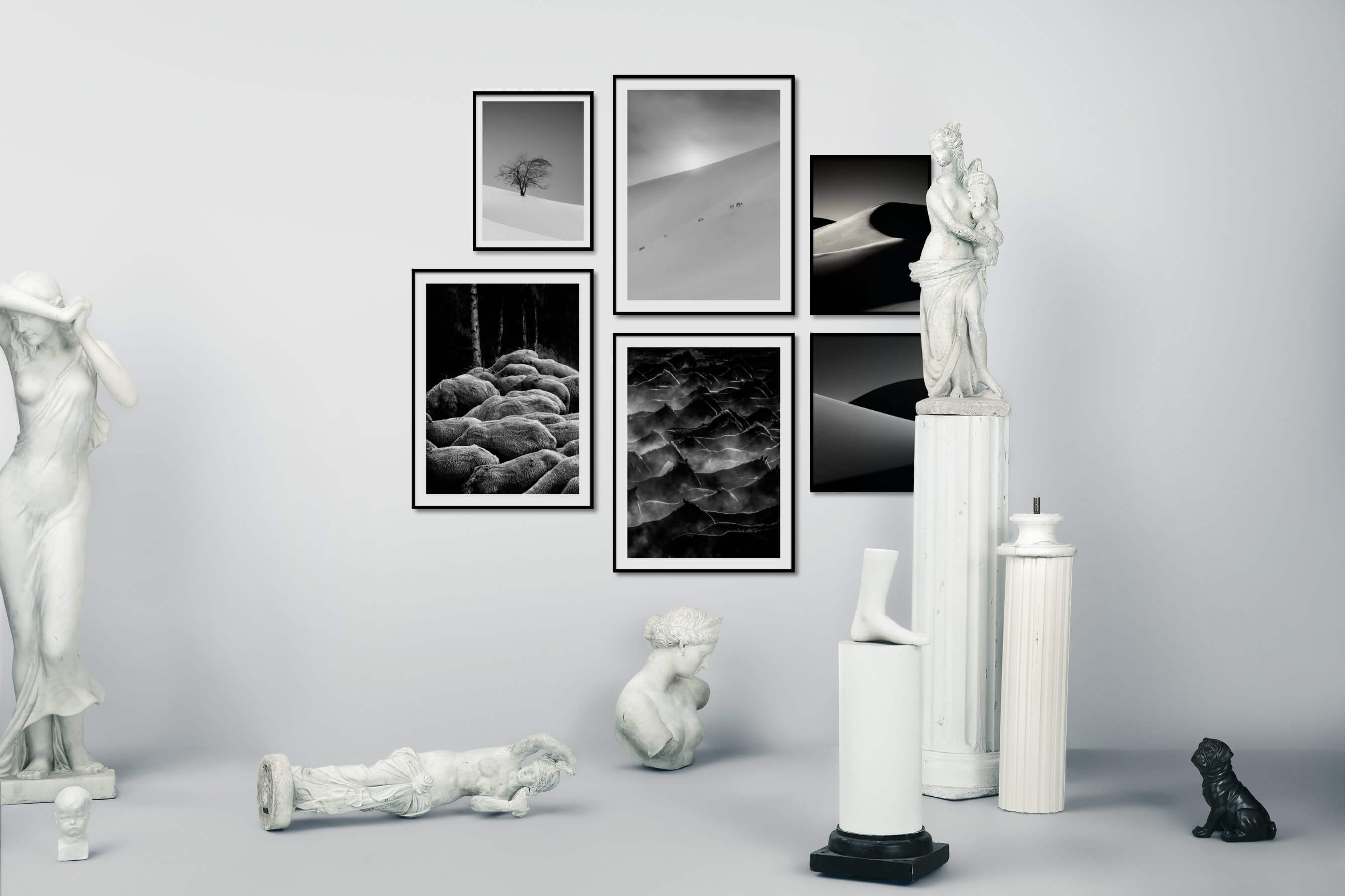 Gallery wall idea with six framed pictures arranged on a wall depicting Black & White, For the Minimalist, Nature, Animals, Country Life, and For the Moderate