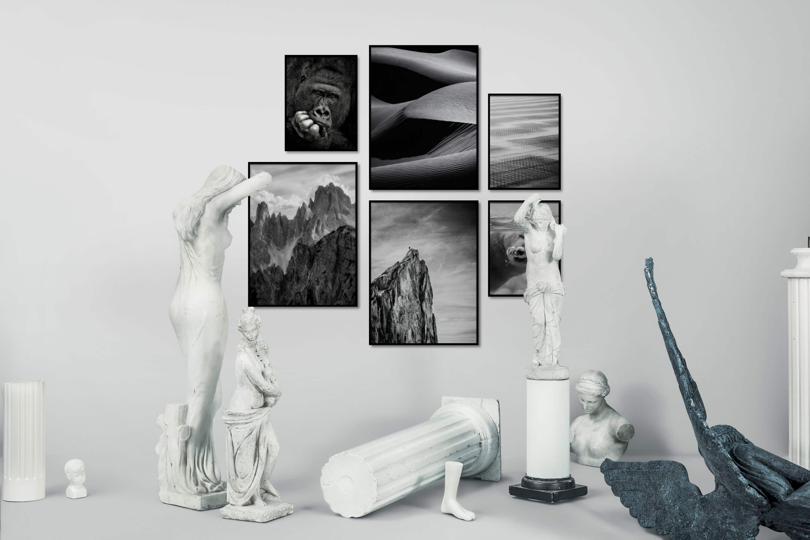 Gallery wall idea with six framed pictures arranged on a wall depicting Black & White, Animals, For the Moderate, Nature, and Mindfulness