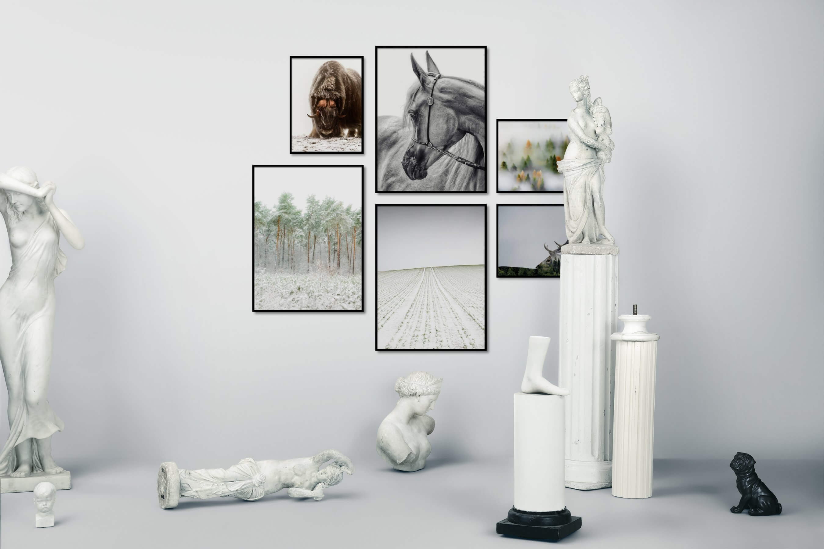 Gallery wall idea with six framed pictures arranged on a wall depicting Animals, Black & White, Country Life, Bright Tones, Nature, Mindfulness, and For the Minimalist