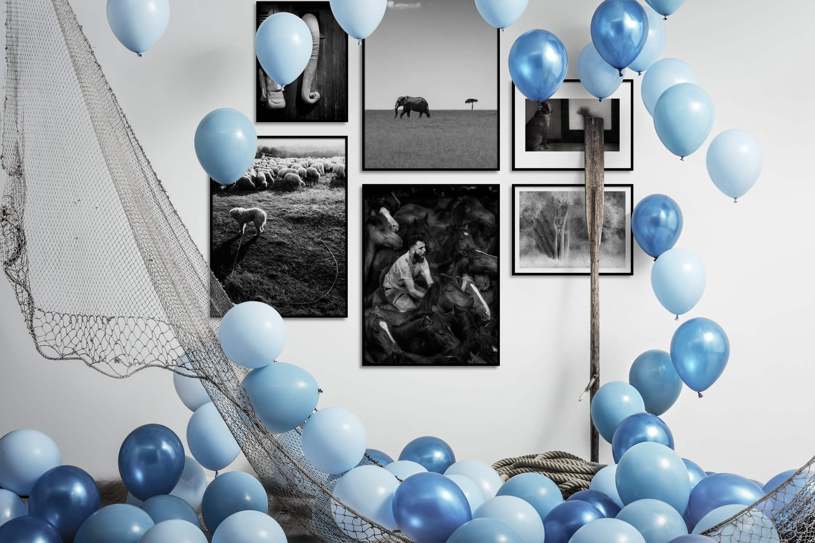 Gallery wall idea with six framed pictures arranged on a wall depicting Black & White, For the Moderate, Animals, Country Life, and Nature