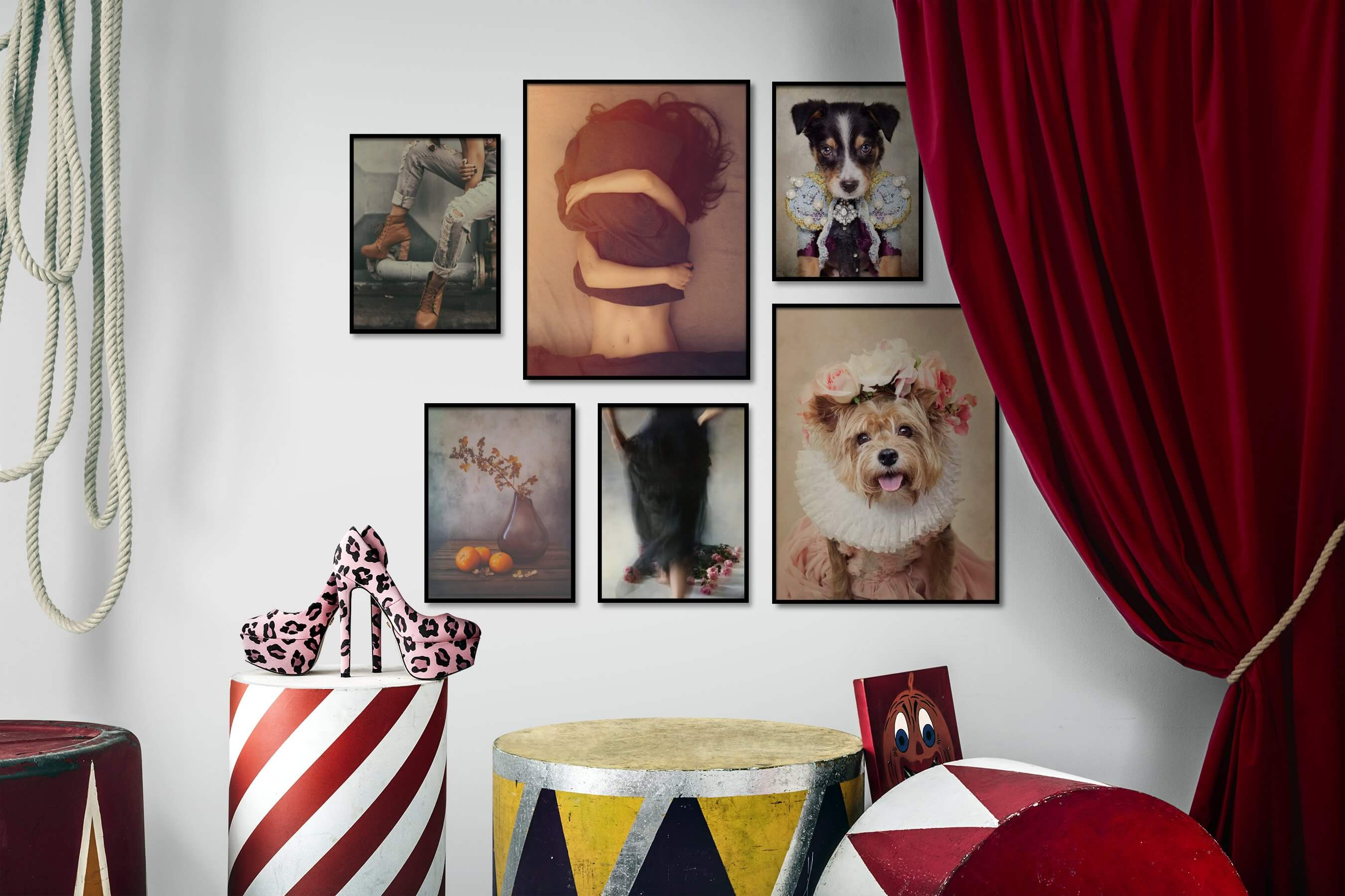 Gallery wall idea with six framed pictures arranged on a wall depicting Fashion & Beauty, Vintage, Flowers & Plants, and Animals