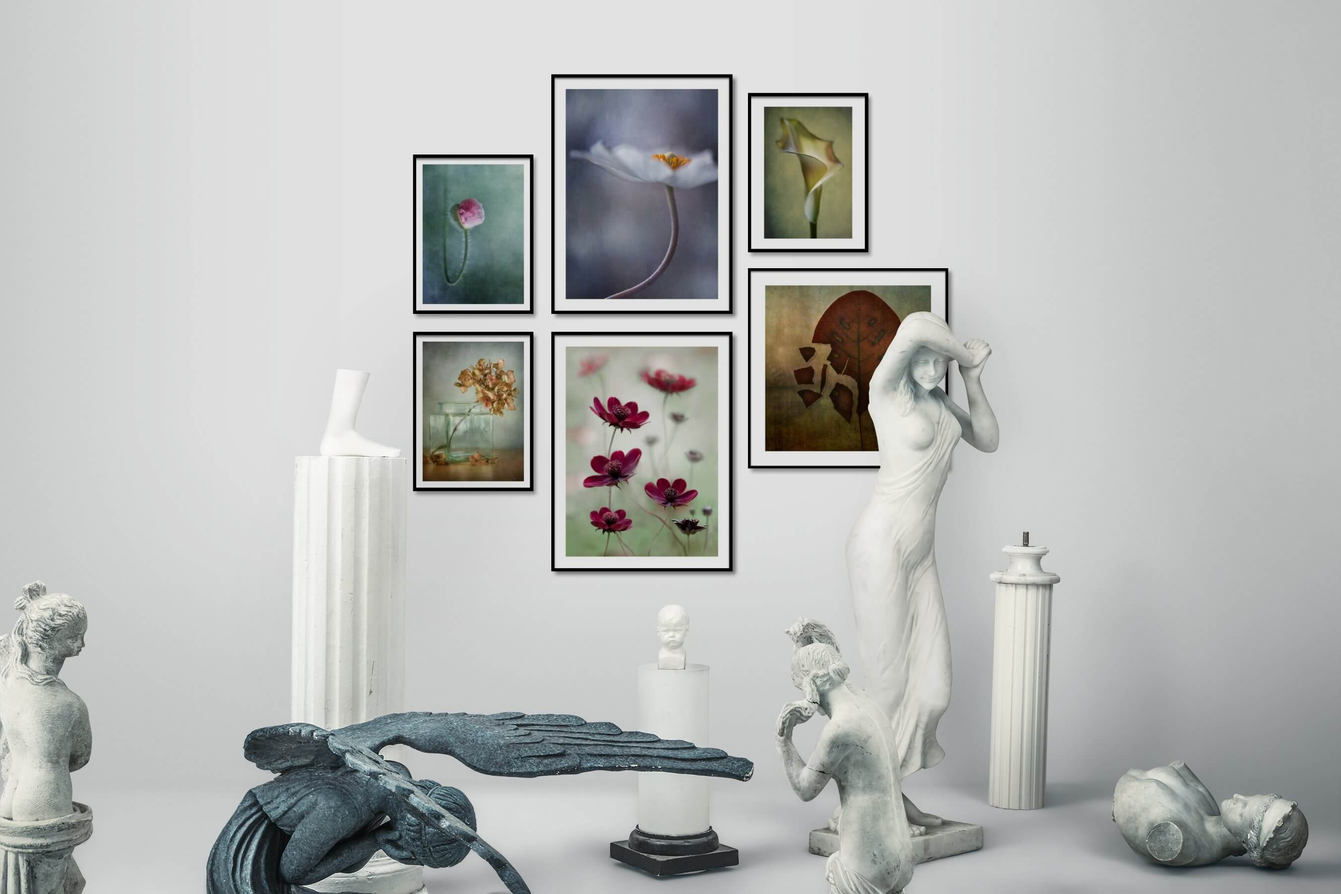 Gallery wall idea with six framed pictures arranged on a wall depicting For the Minimalist, Flowers & Plants, and Vintage