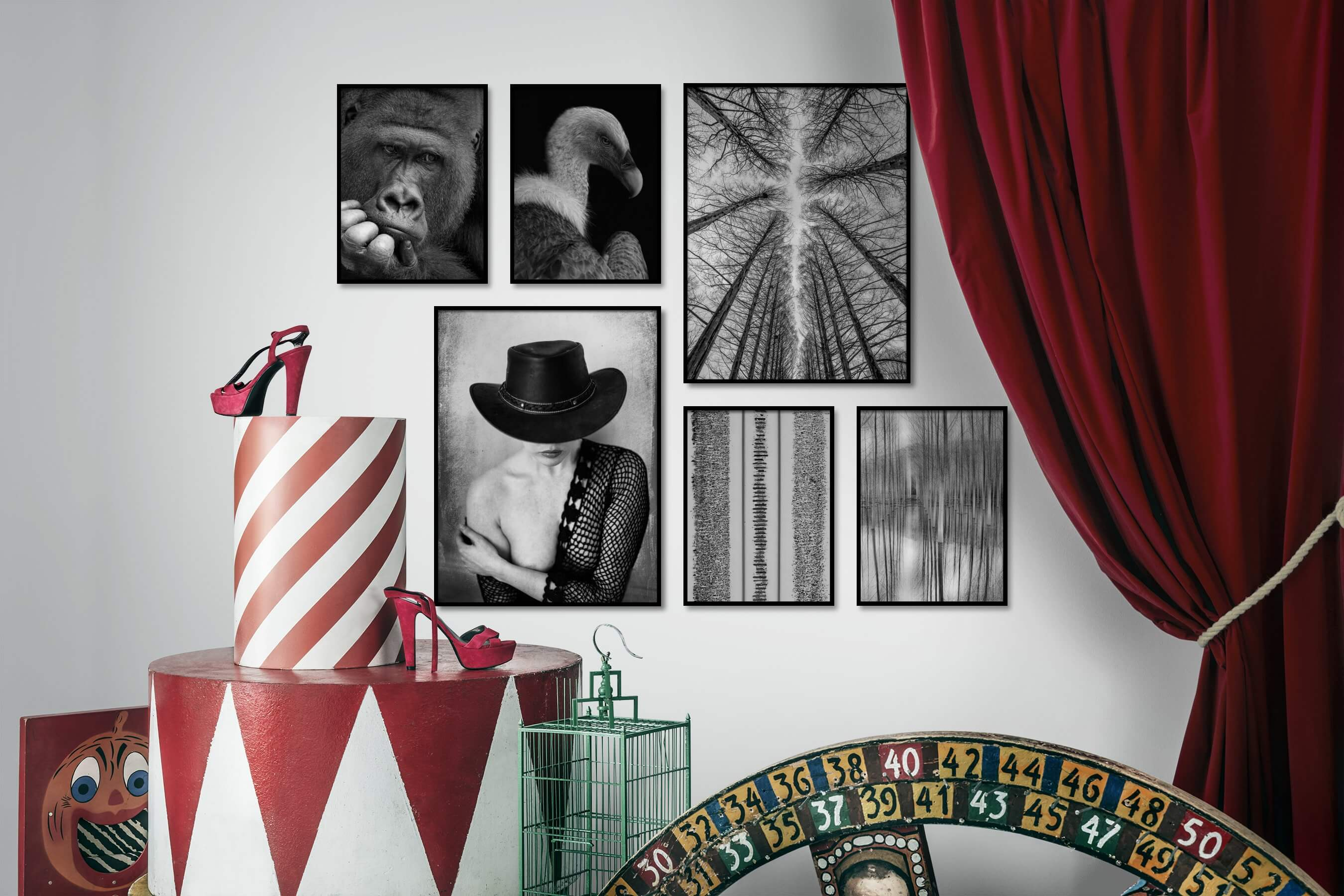Gallery wall idea with six framed pictures arranged on a wall depicting Black & White, Animals, Dark Tones, For the Moderate, Fashion & Beauty, Vintage, and Nature