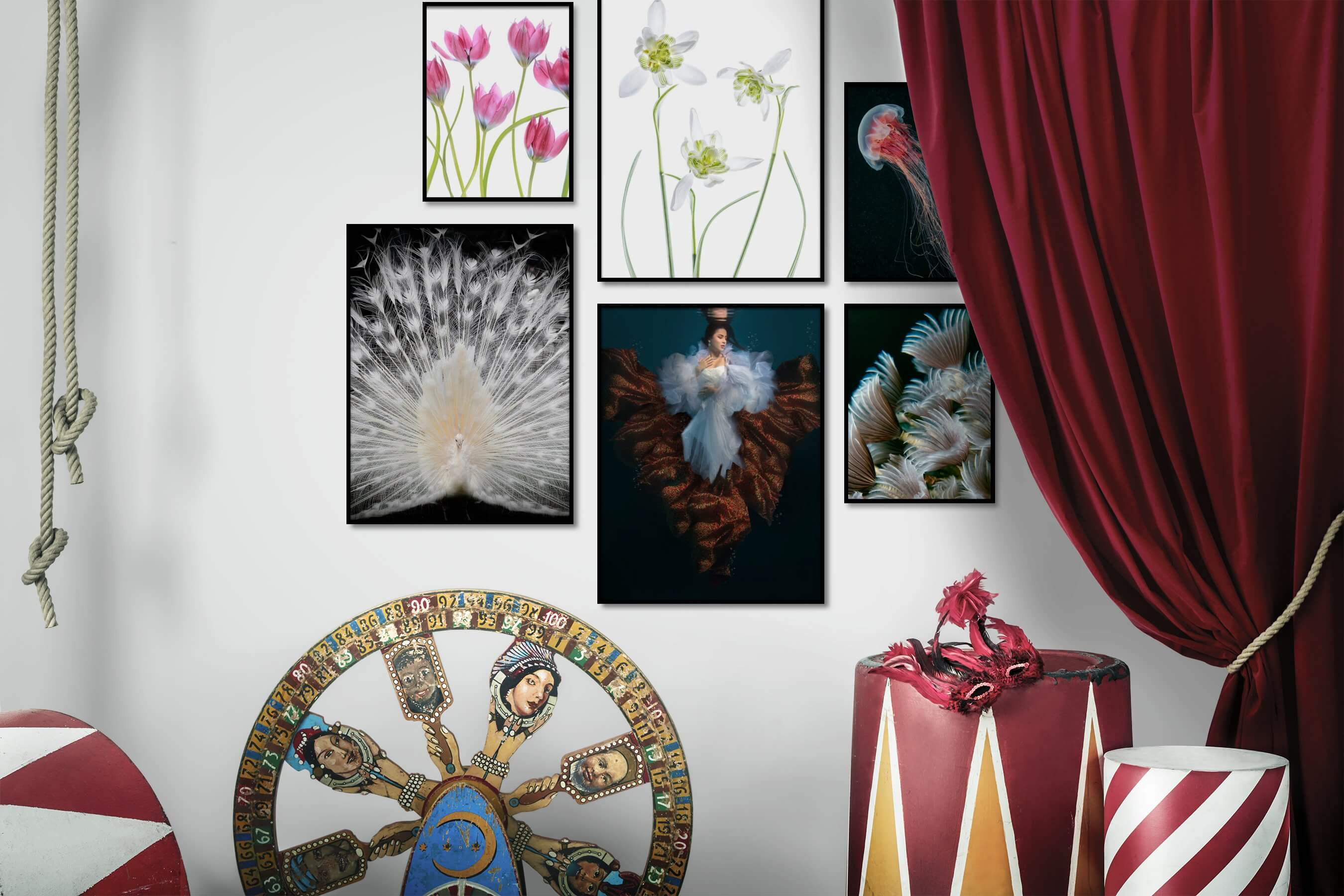 Gallery wall idea with six framed pictures arranged on a wall depicting Bright Tones, For the Moderate, Flowers & Plants, Animals, Fashion & Beauty, Beach & Water, Dark Tones, and For the Minimalist