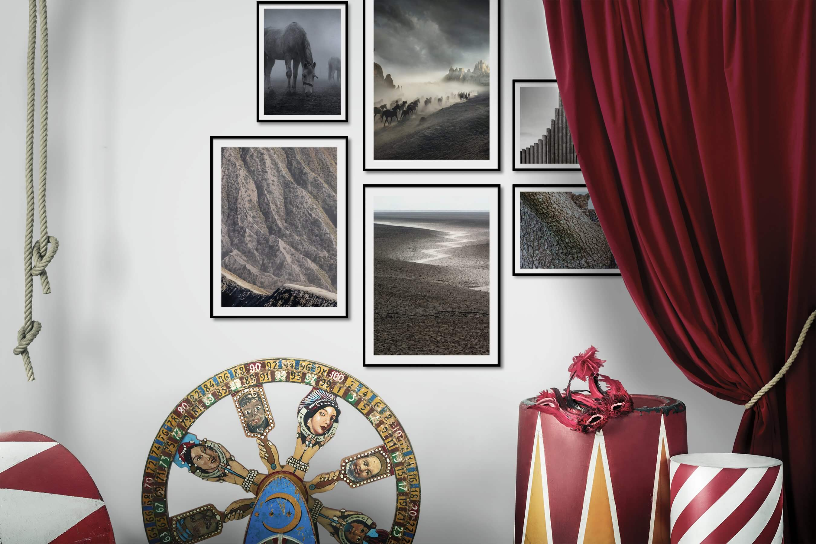 Gallery wall idea with six framed pictures arranged on a wall depicting Black & White, Animals, Country Life, Nature, For the Minimalist, and For the Moderate