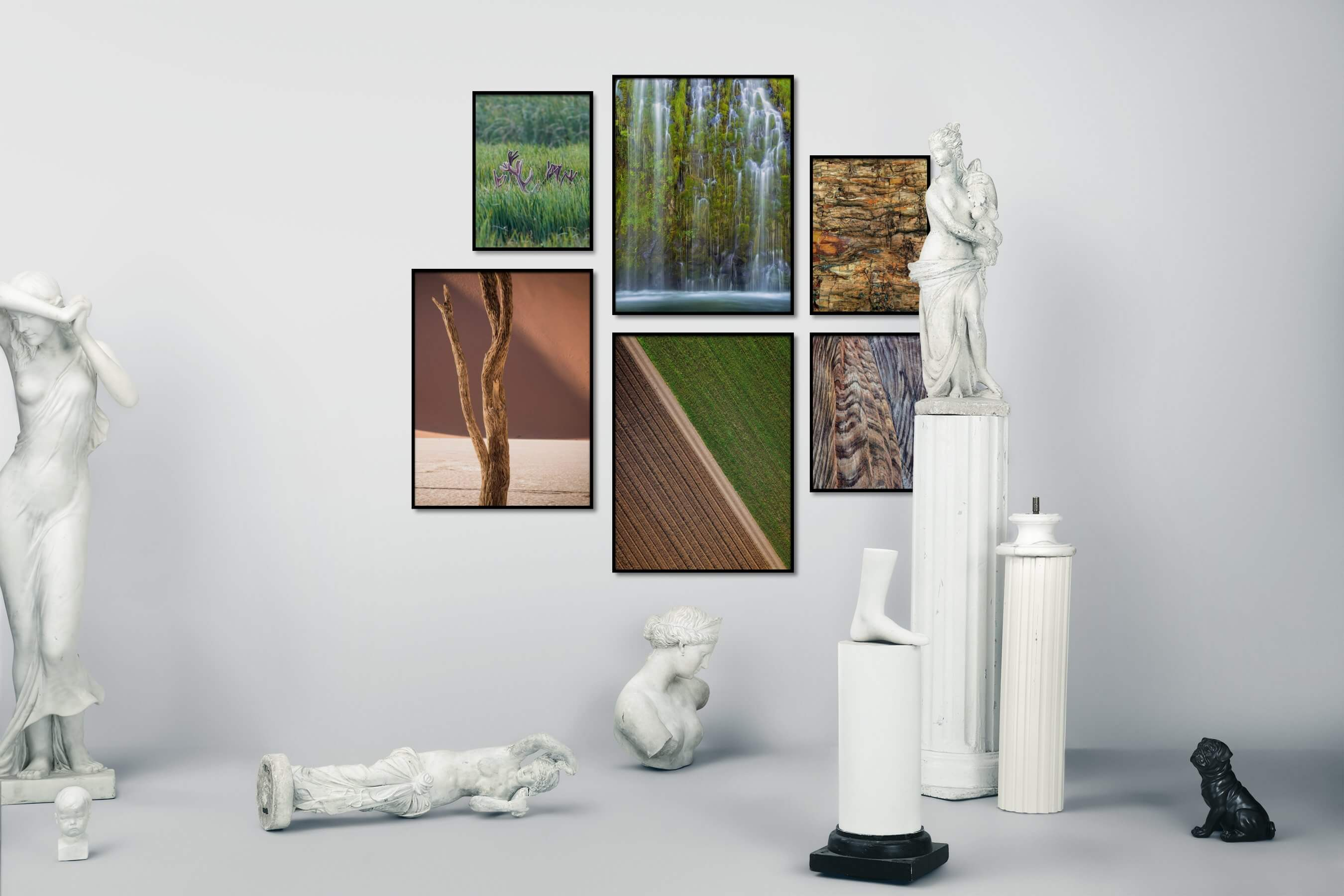 Gallery wall idea with six framed pictures arranged on a wall depicting For the Moderate, Animals, Nature, Mindfulness, Country Life, and For the Maximalist