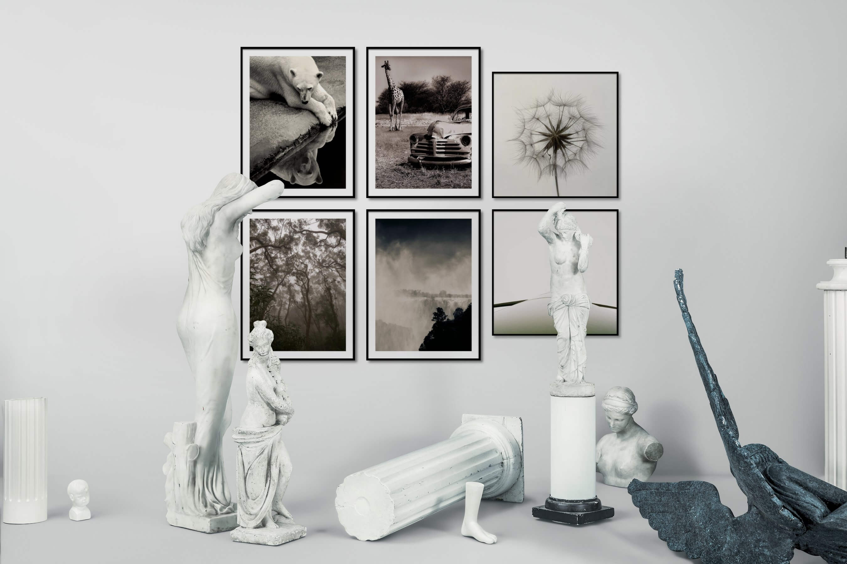 Gallery wall idea with six framed pictures arranged on a wall depicting Black & White, Animals, Vintage, Nature, For the Moderate, Flowers & Plants, and For the Minimalist