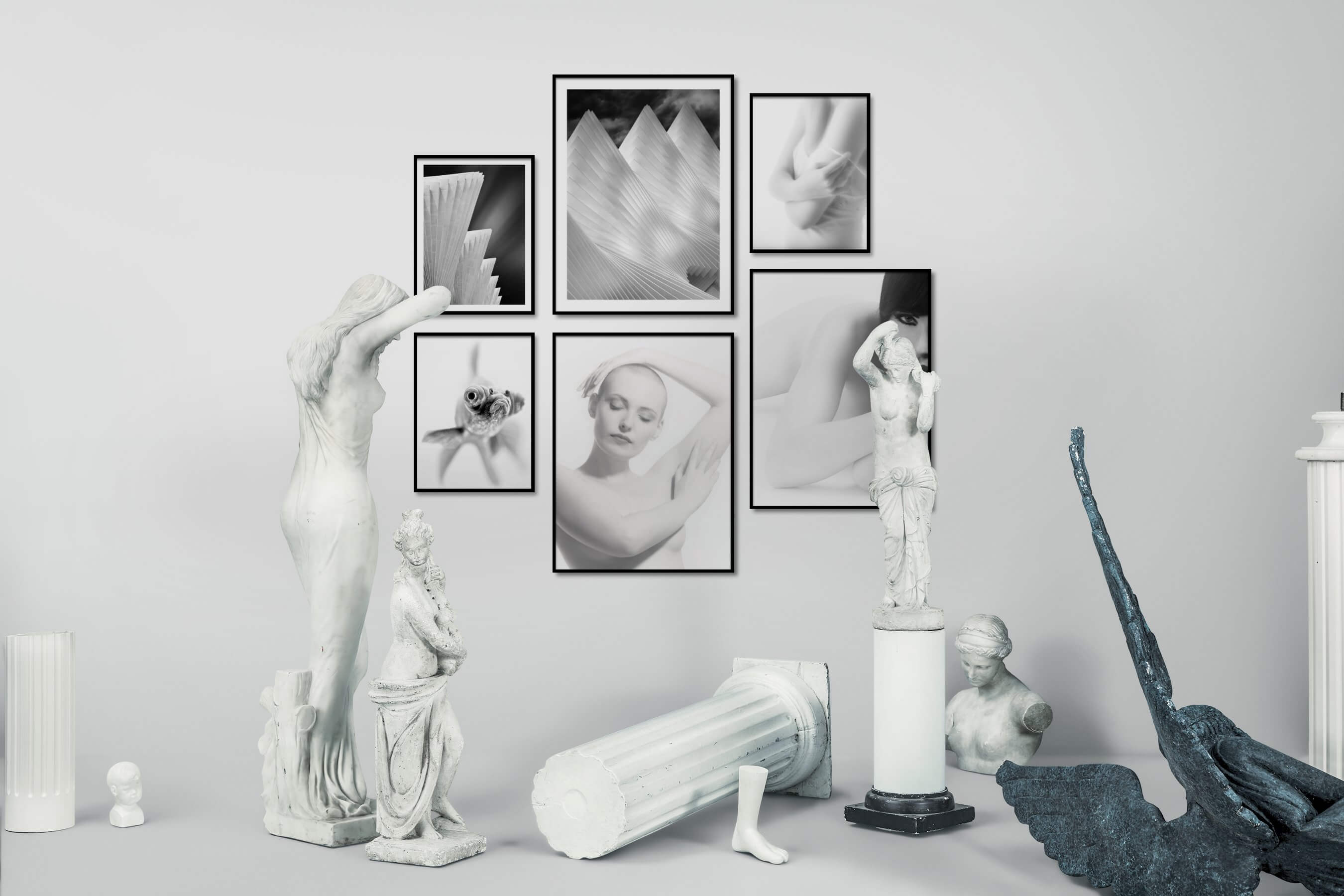 Gallery wall idea with six framed pictures arranged on a wall depicting Black & White, For the Moderate, Bright Tones, For the Minimalist, Animals, and Fashion & Beauty