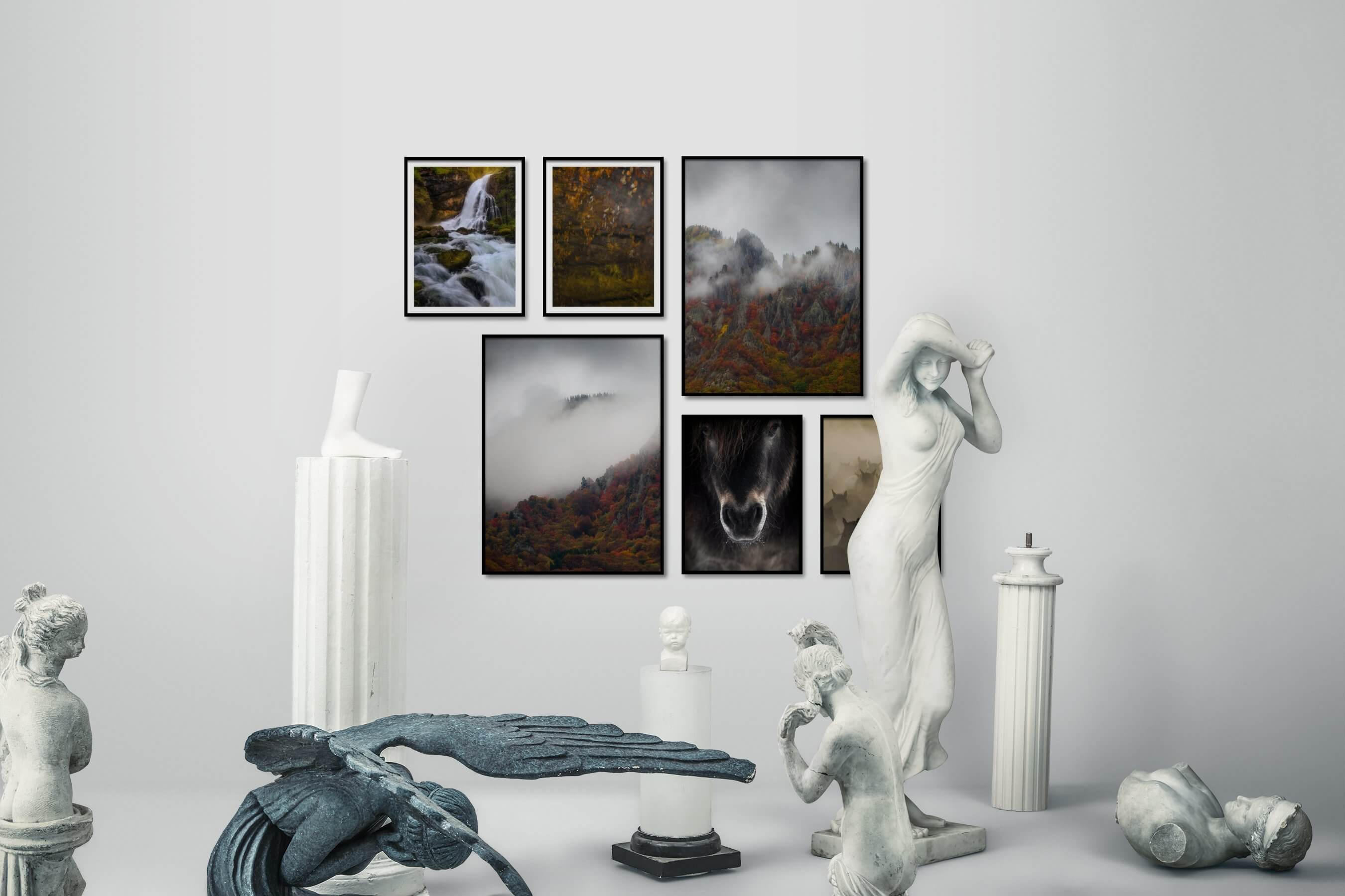 Gallery wall idea with six framed pictures arranged on a wall depicting Nature, For the Moderate, Mindfulness, Animals, and Country Life