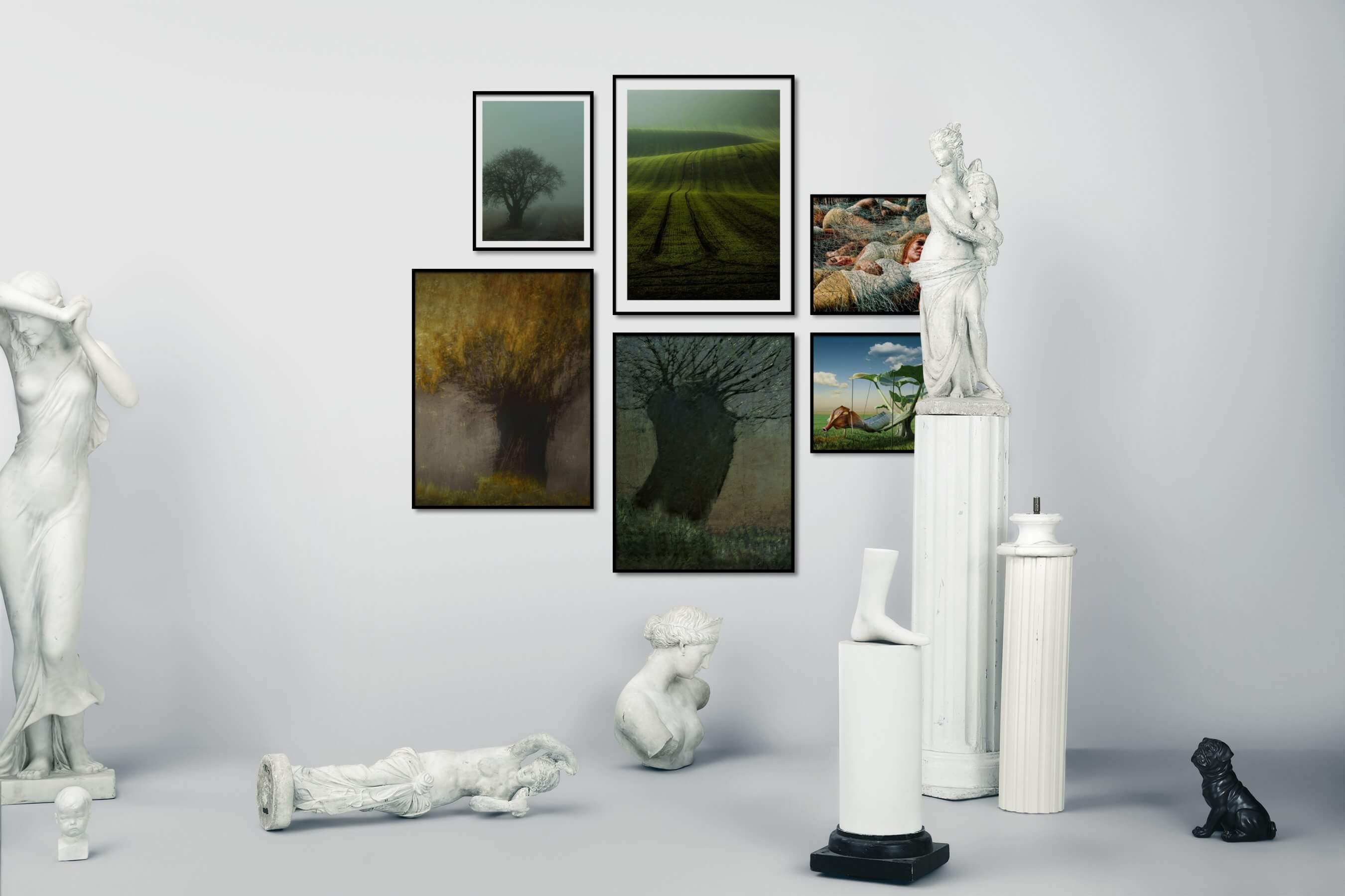 Gallery wall idea with six framed pictures arranged on a wall depicting Country Life, Nature, Artsy, For the Maximalist, and Flowers & Plants