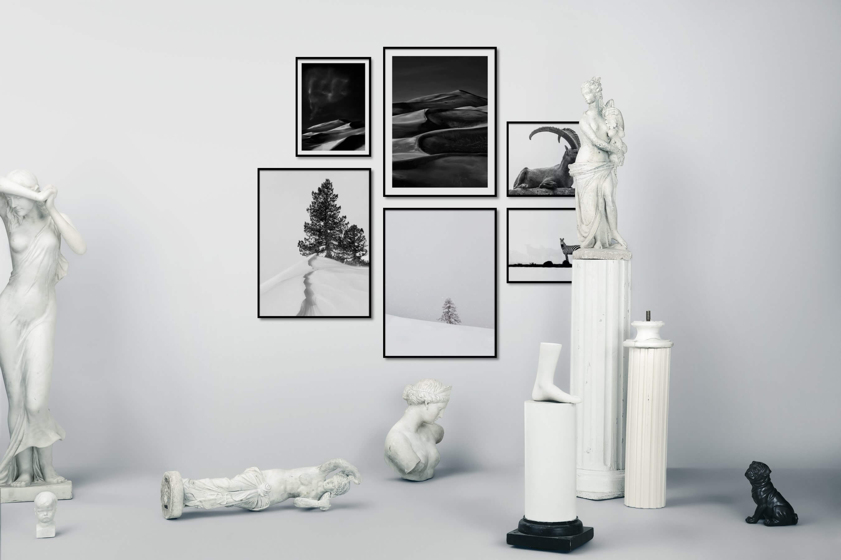 Gallery wall idea with six framed pictures arranged on a wall depicting Black & White, For the Moderate, Nature, For the Minimalist, Bright Tones, and Animals