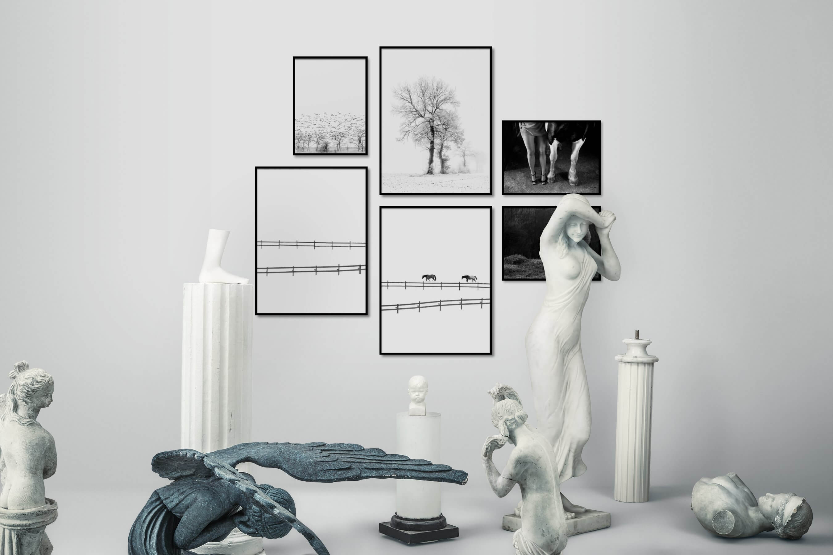 Gallery wall idea with six framed pictures arranged on a wall depicting Black & White, Bright Tones, For the Minimalist, Nature, Country Life, Animals, and For the Moderate