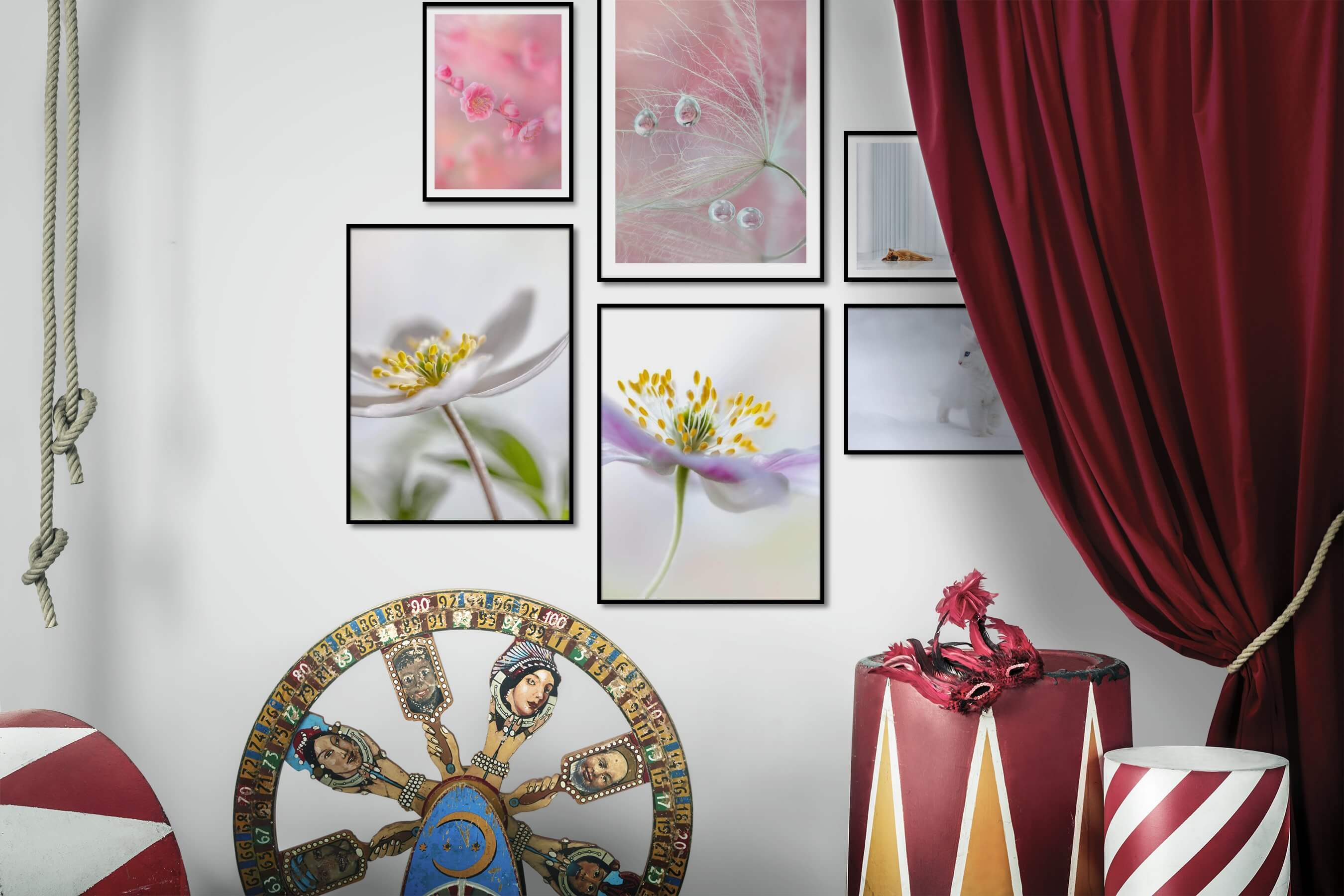 Gallery wall idea with six framed pictures arranged on a wall depicting Flowers & Plants, Mindfulness, For the Minimalist, For the Moderate, and Animals