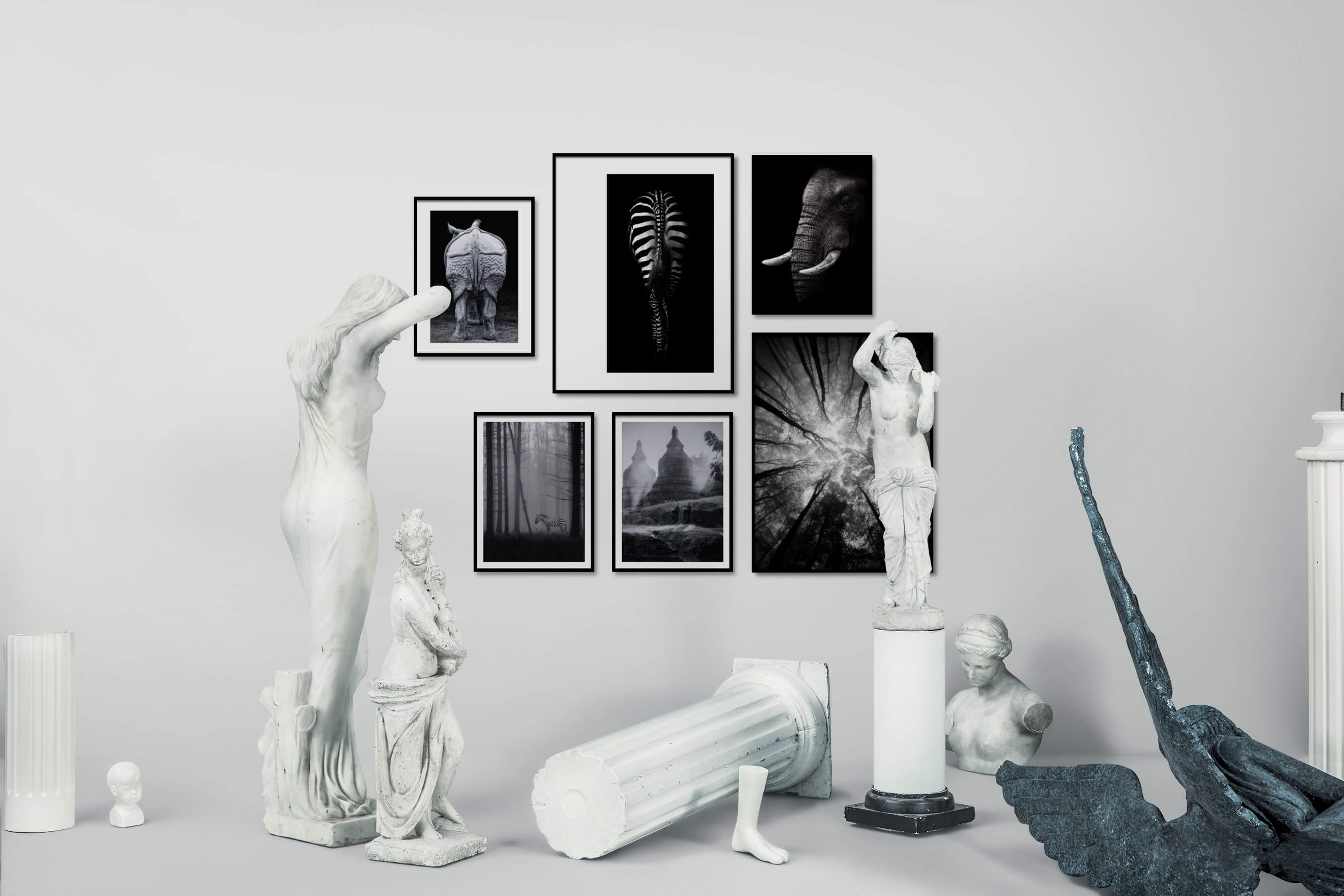 Gallery wall idea with six framed pictures arranged on a wall depicting Black & White, For the Moderate, Animals, For the Minimalist, Nature, Mindfulness, and Dark Tones